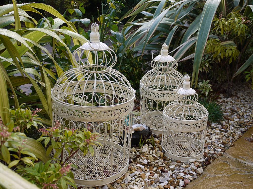 bird cage 4.jpg