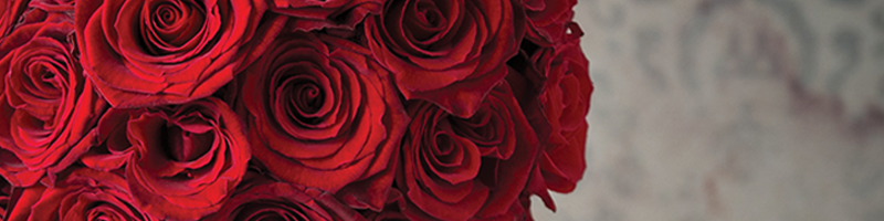 The meaning of red Roses     The traditional gift for valentines, and as most of us know Red Roses symbolise love, romance and are the perfect bloom to simply say 'I love you'. These flowers are our best sellers on Valentine's day and we can understand why, it's a timeless, classic valentine's gift.