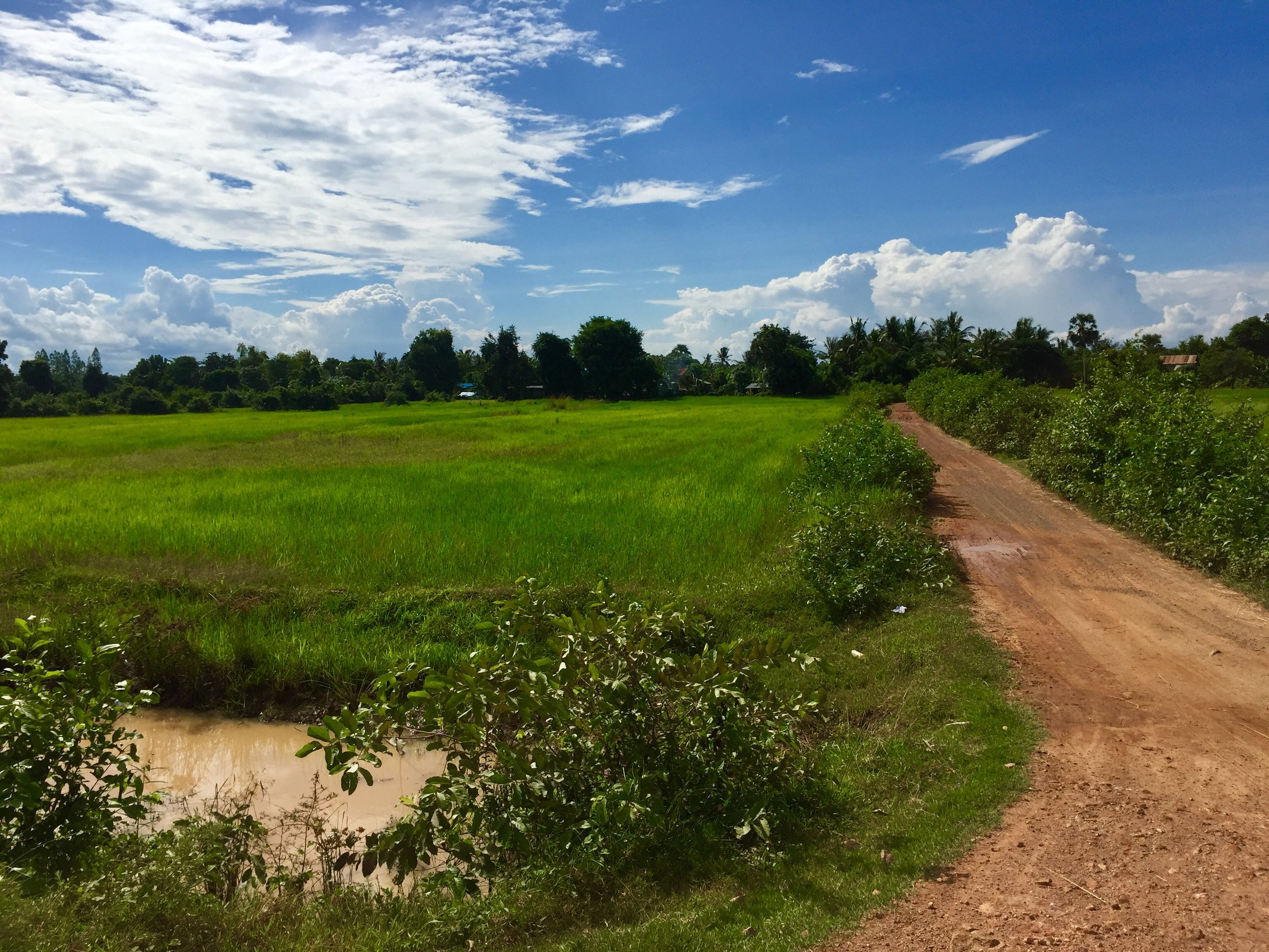 Battambang Countryside