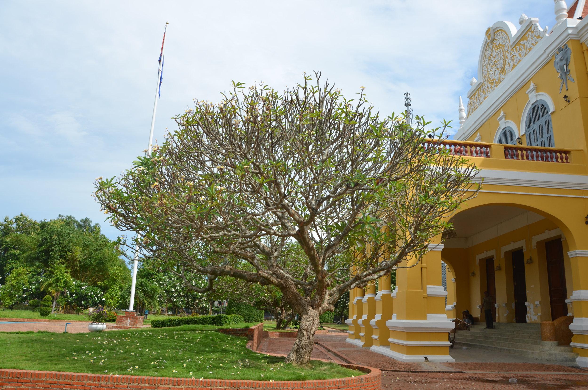 The Provincial House in Battambang