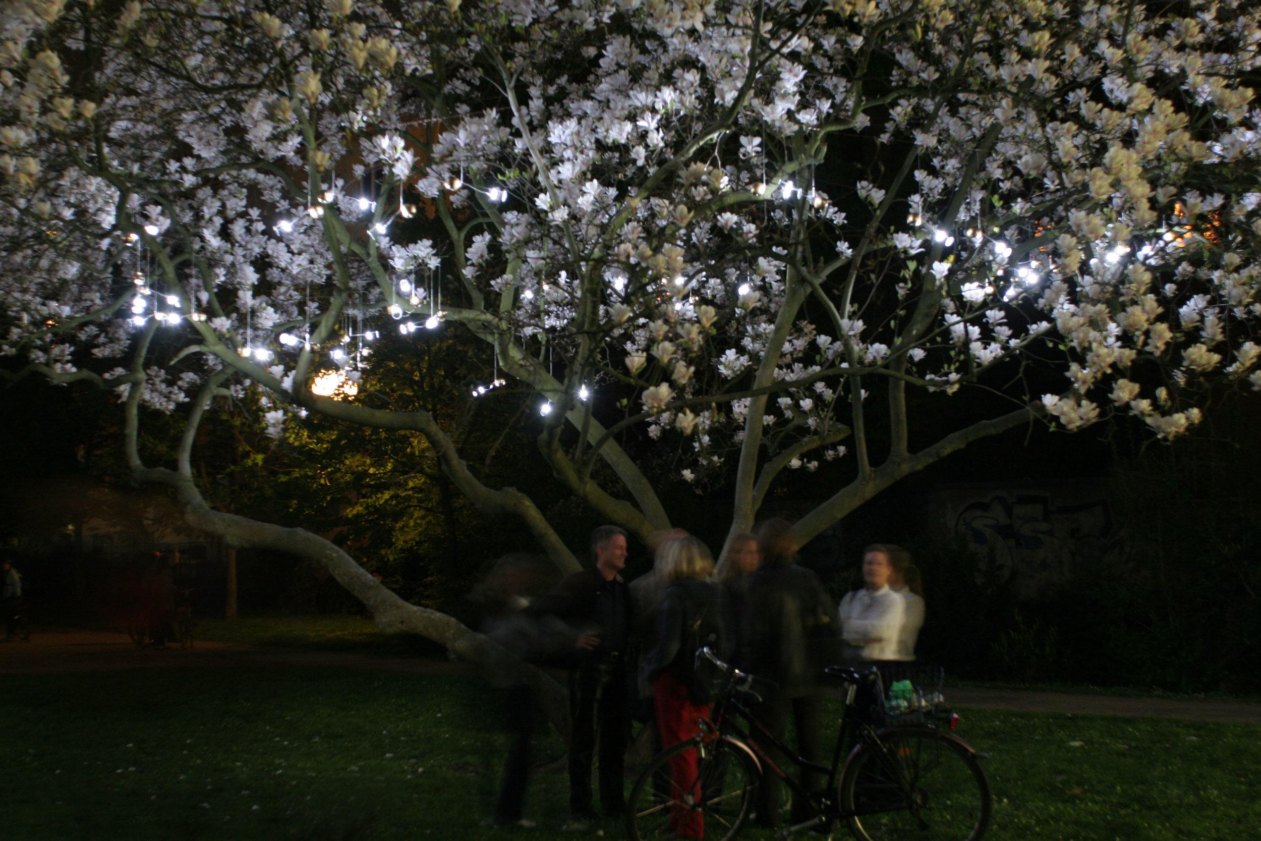 magic apple installation.JPG