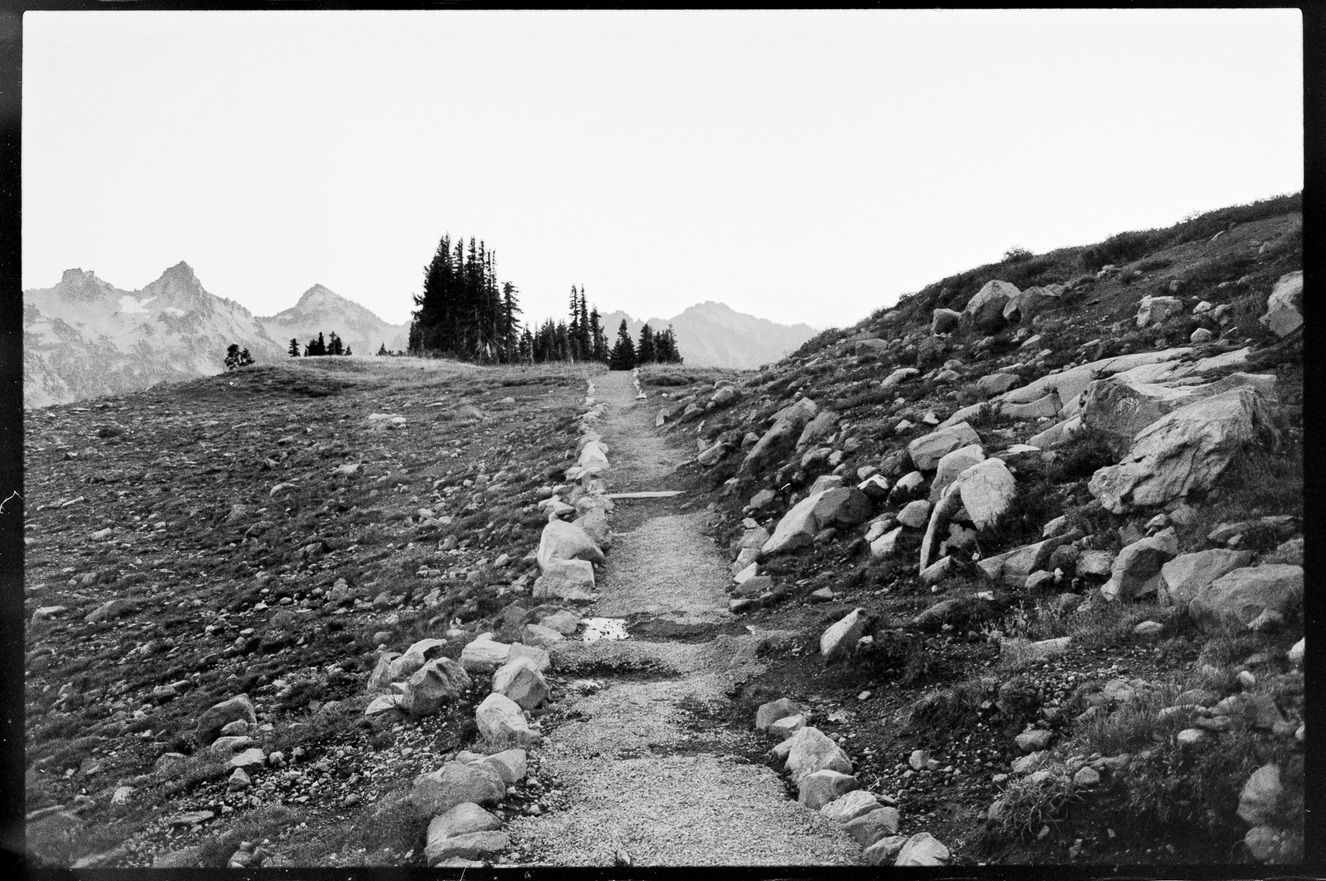 Walk Mt Ranier—Chris-Page-Art-6.jpg