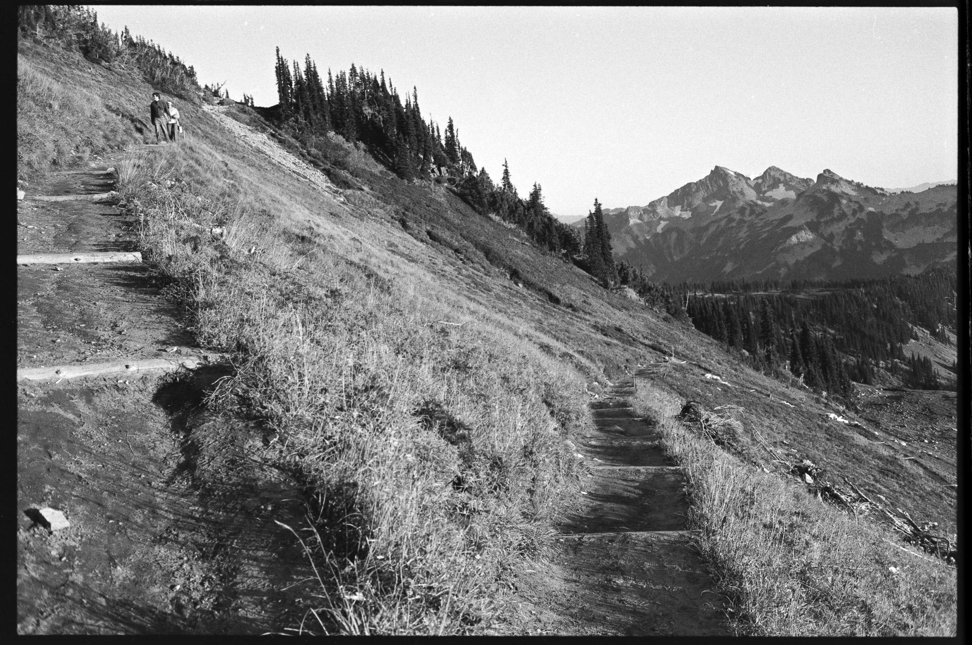 Walk Mt Ranier—Chris-Page-Art-11.jpg