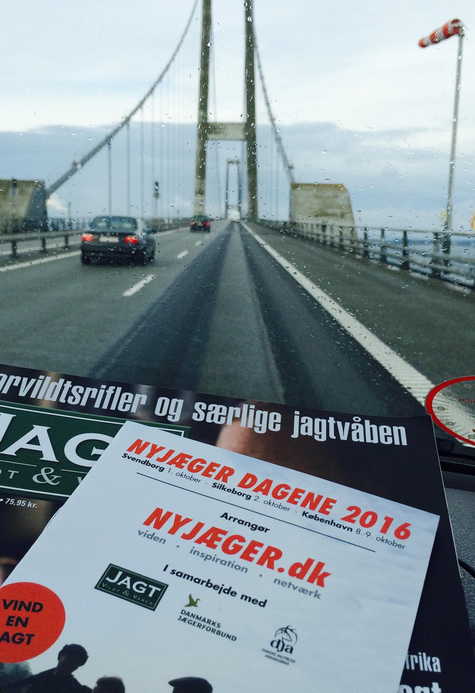 bridge_pic.jpg