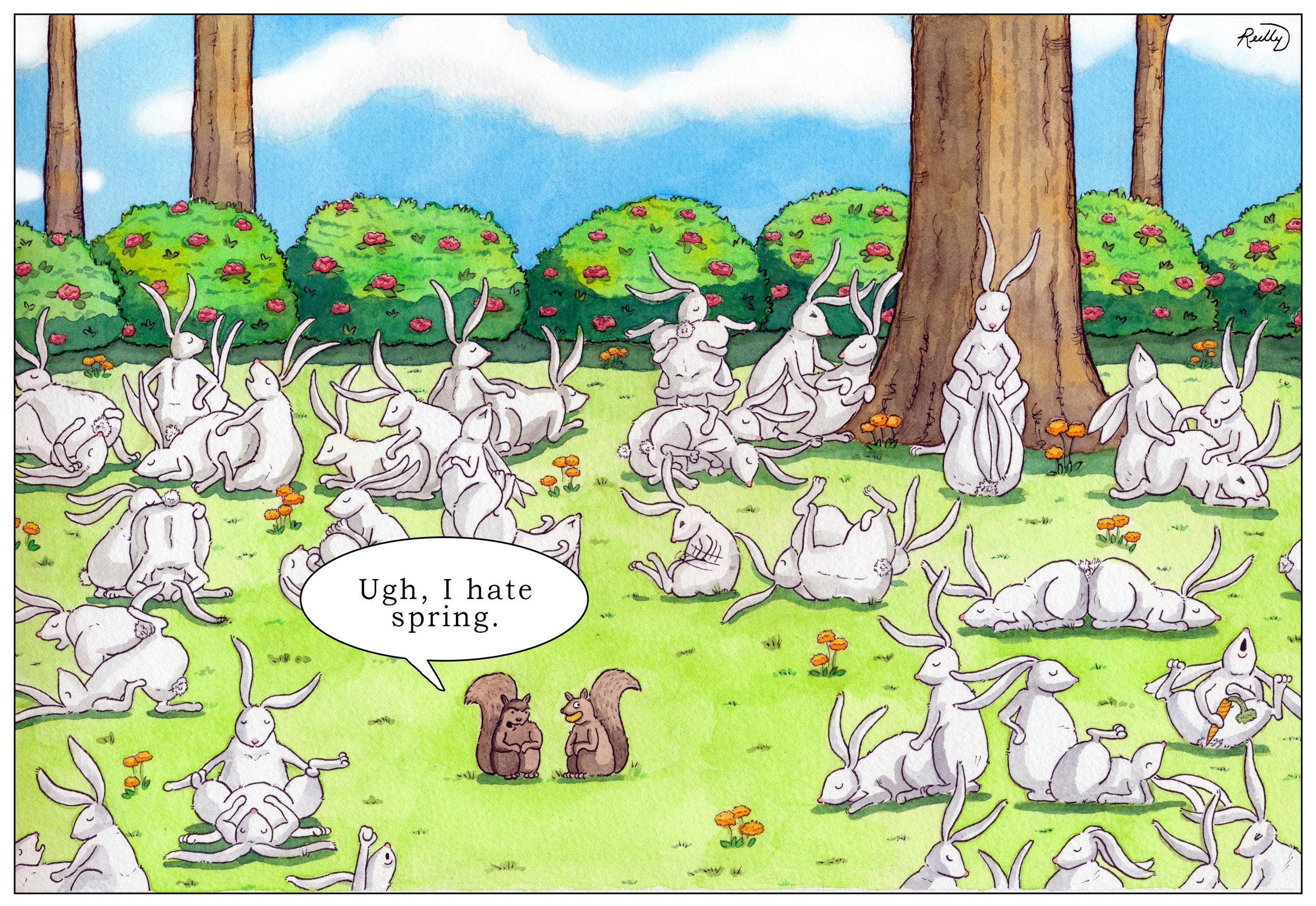 Bunnies_web.jpg