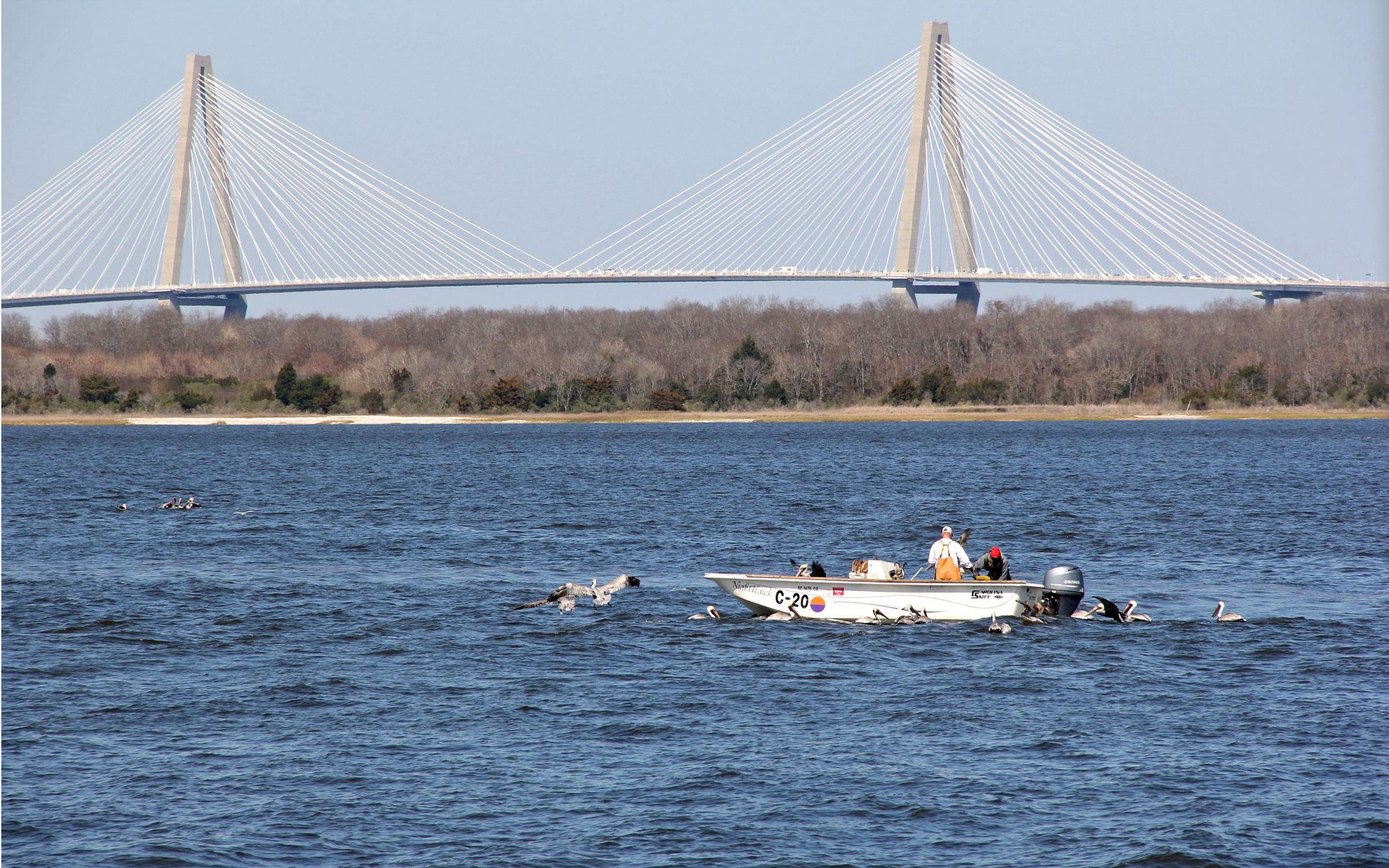 2016.2-Charleston-7176.jpg
