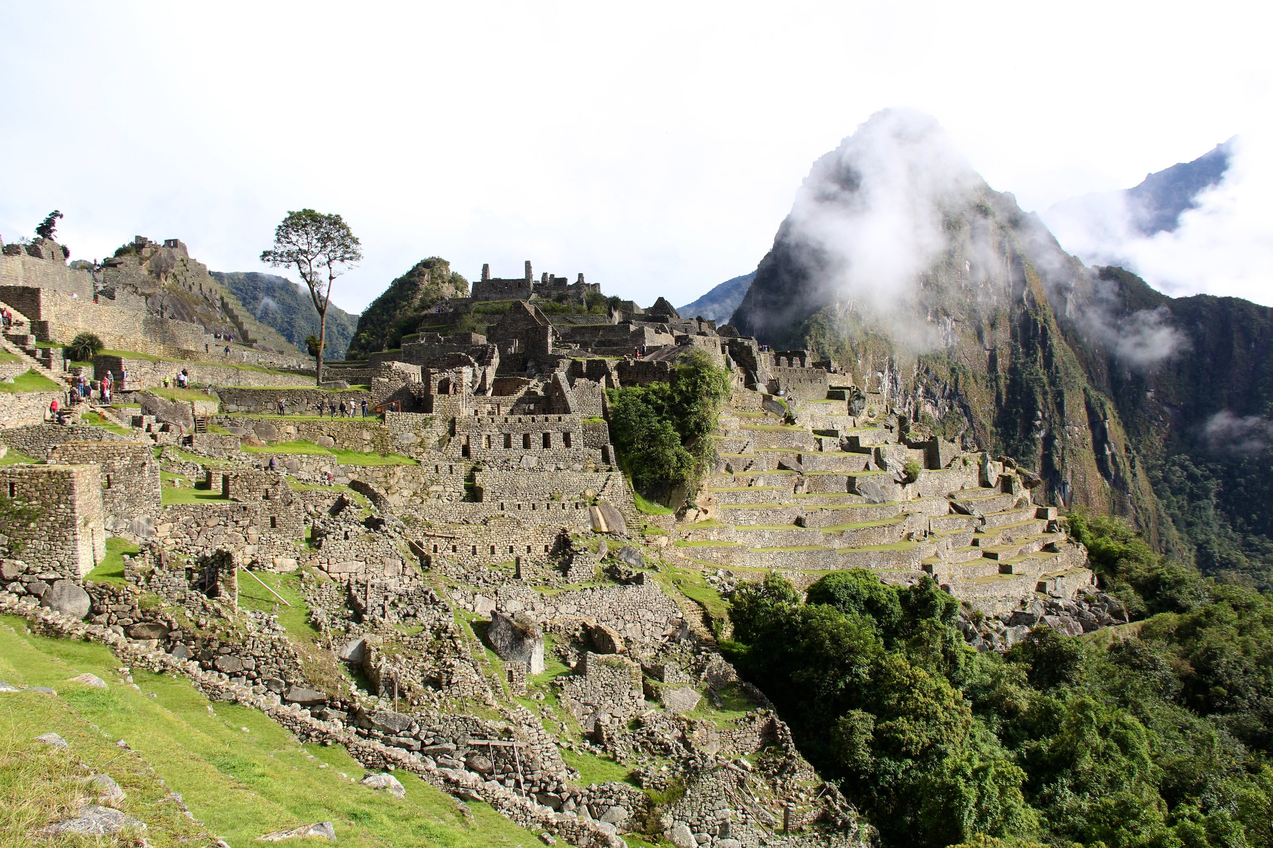 Peru 8682.jpg