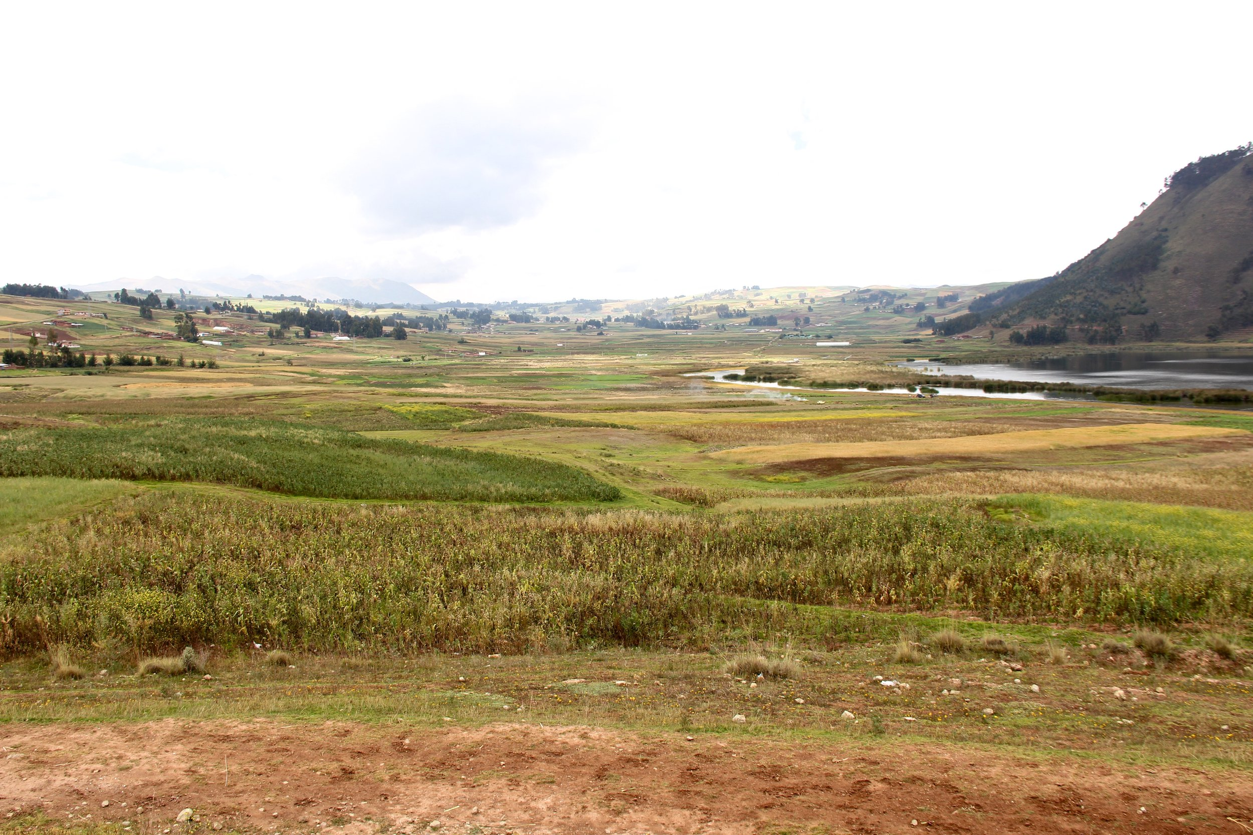 Peru 8697.jpg