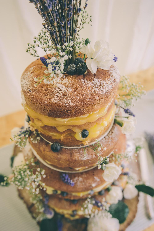 wedding-at-lanyon-manor-71.jpg
