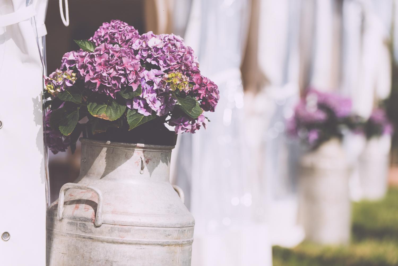 penzance-wedding-81.jpg