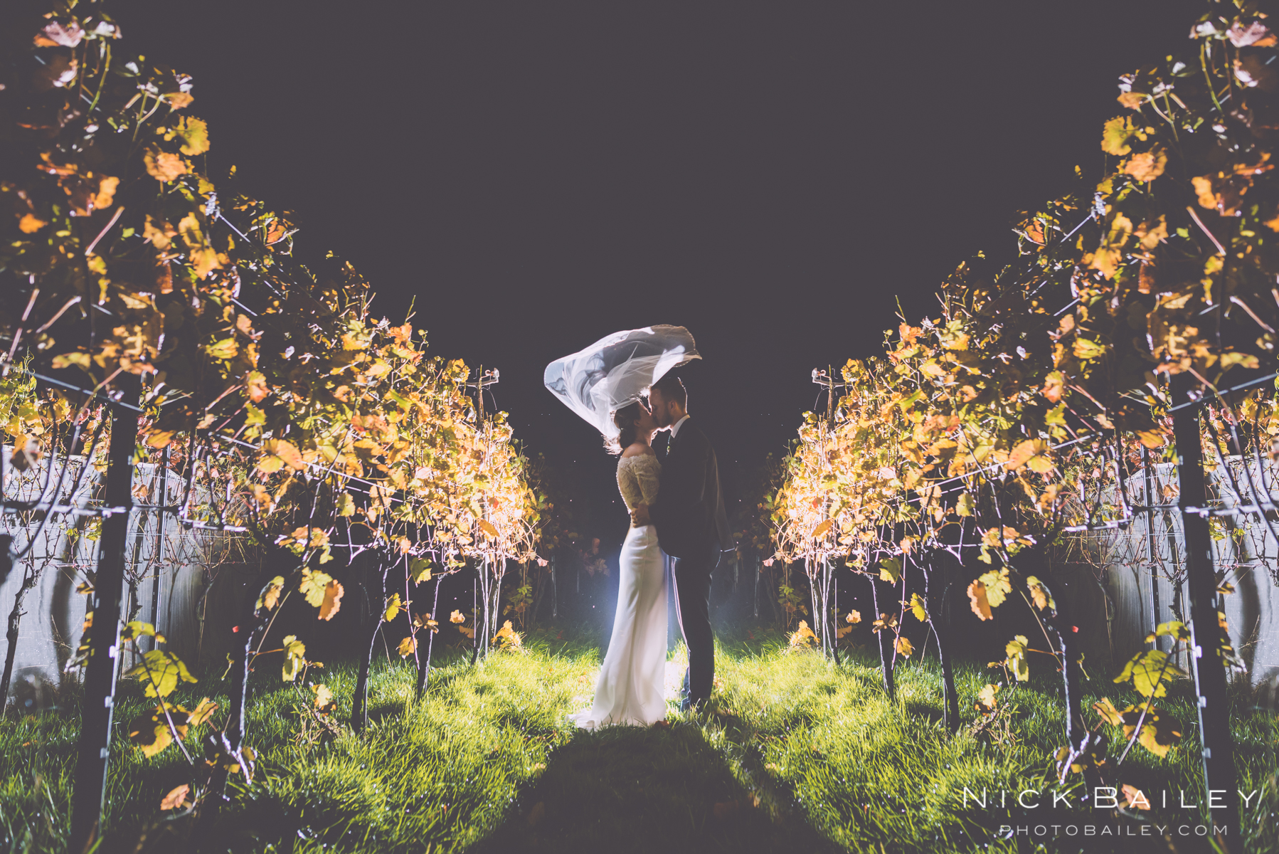 trevibban wedding