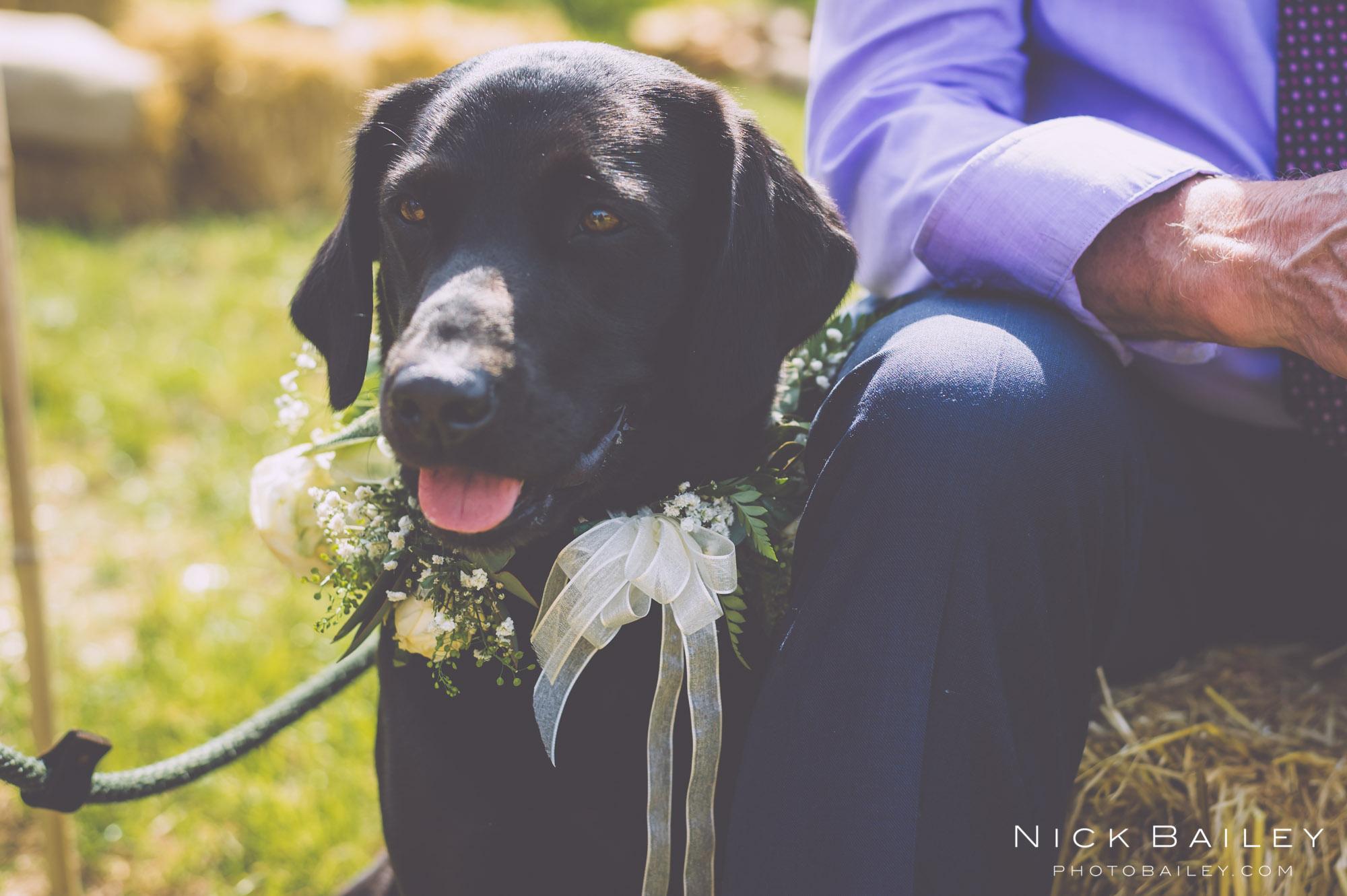 wedding-photographer-bodmin-64.jpg