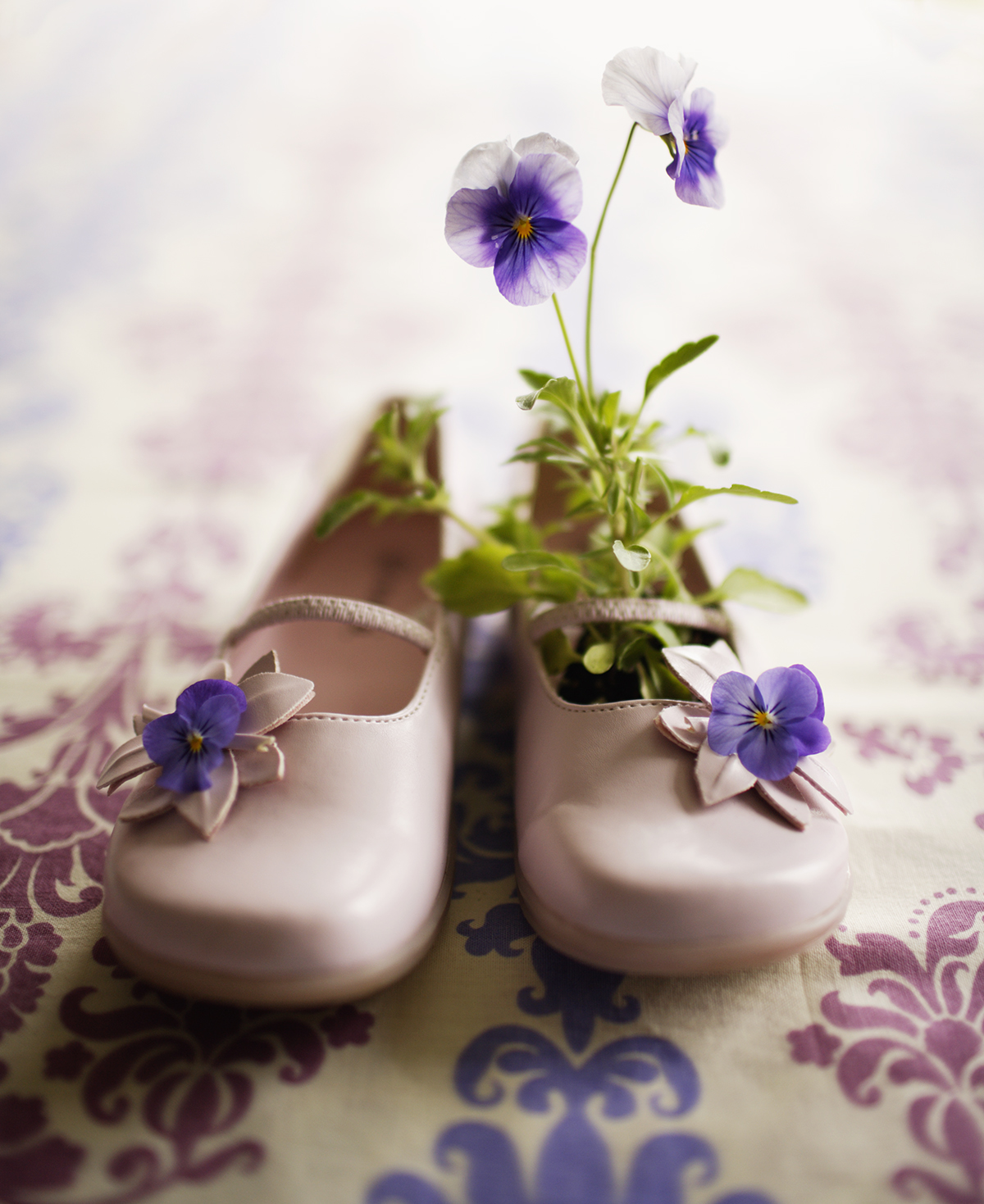 pansy shoes.jpg