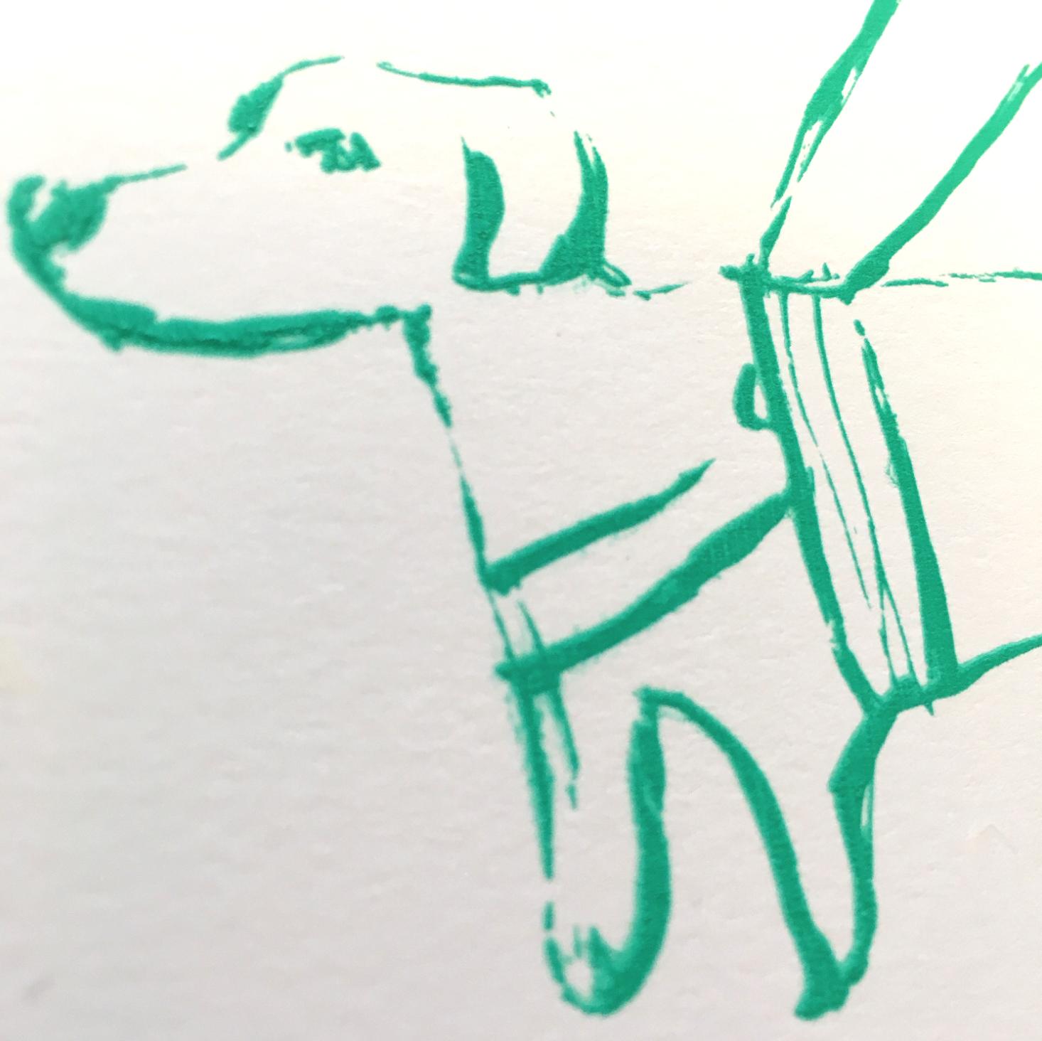 Førerhunden i et slags ufokusert nærbilde.