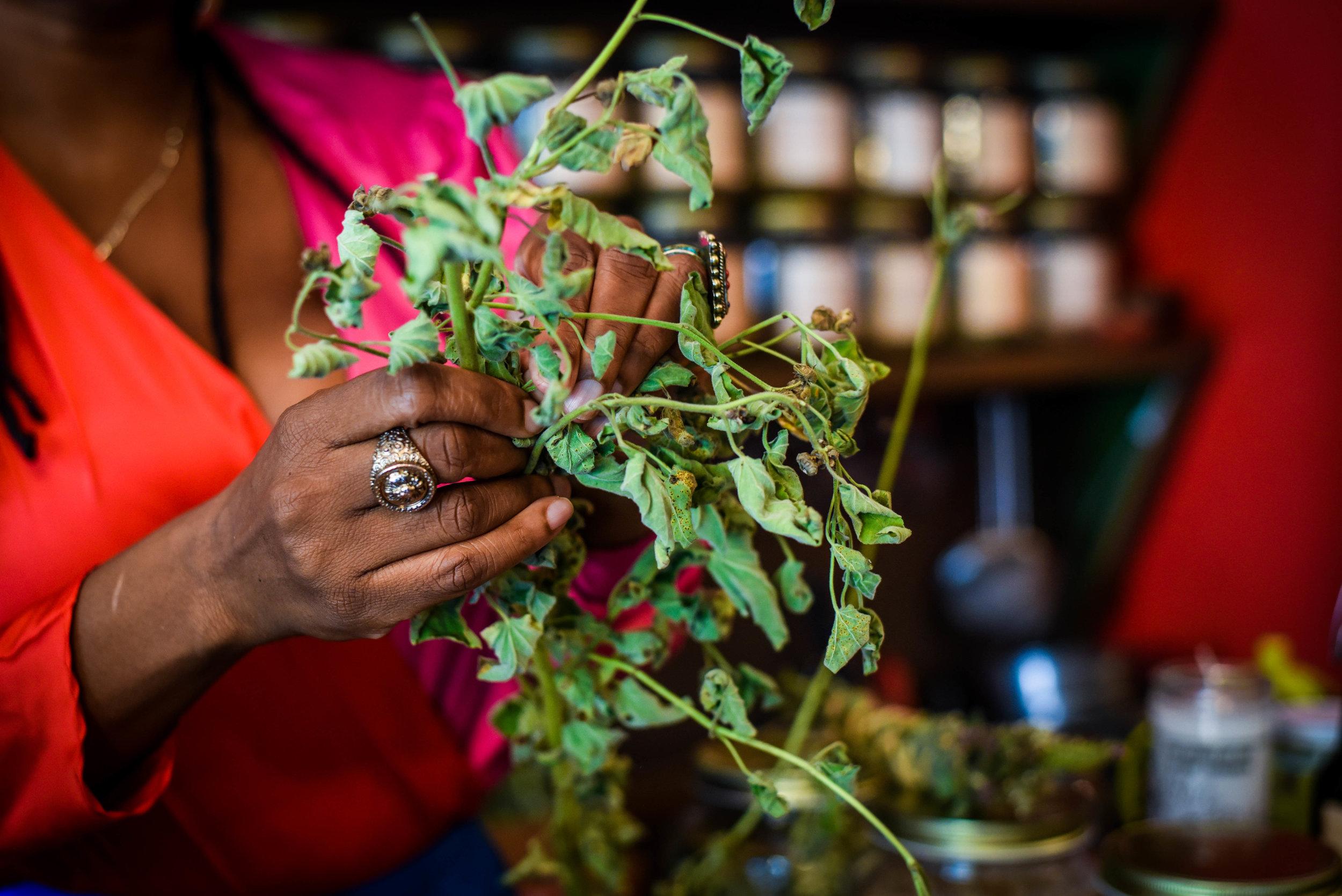 Herbalist and Spiritual Teacher Karen Rose inside Sacred Vibes Apothecary