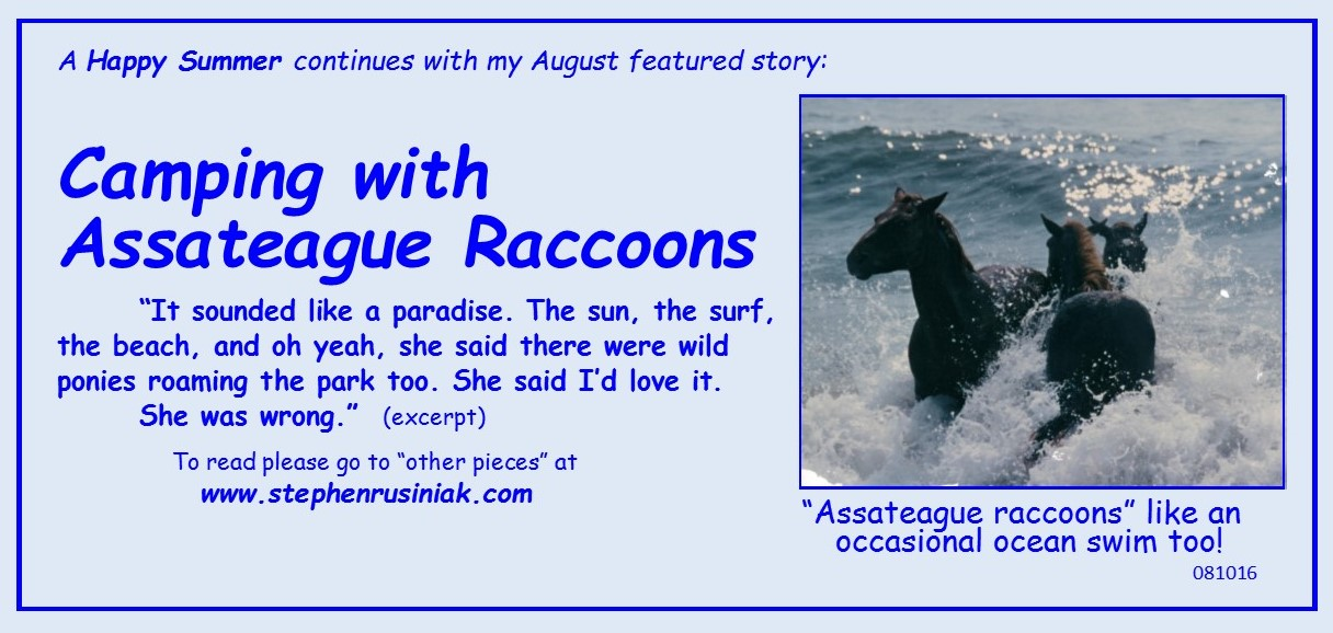 Camping with Assateague Raccoons 081016.jpg