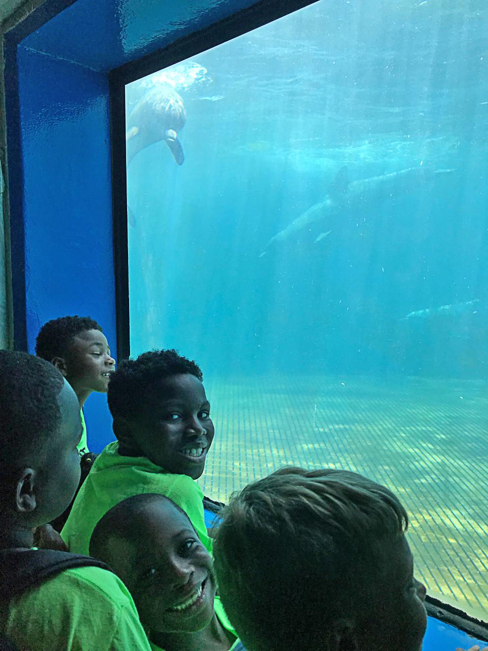 Annie R Morgan Summer 2019 Aquarium 1.jpg