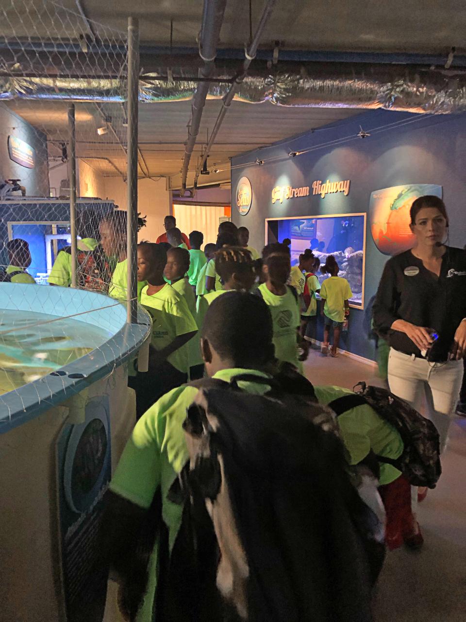 Annie R Morgan Summer 2019 Aquarium 6.jpg