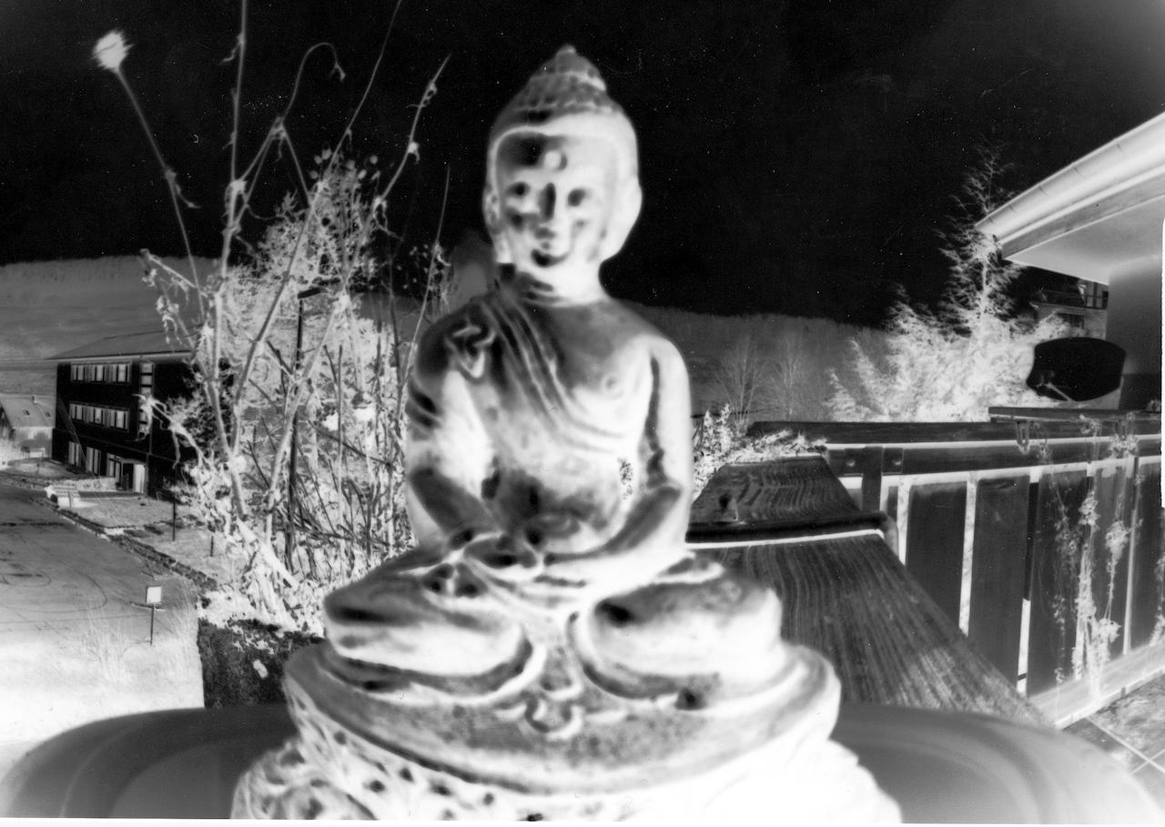 Buddha_neg.jpg