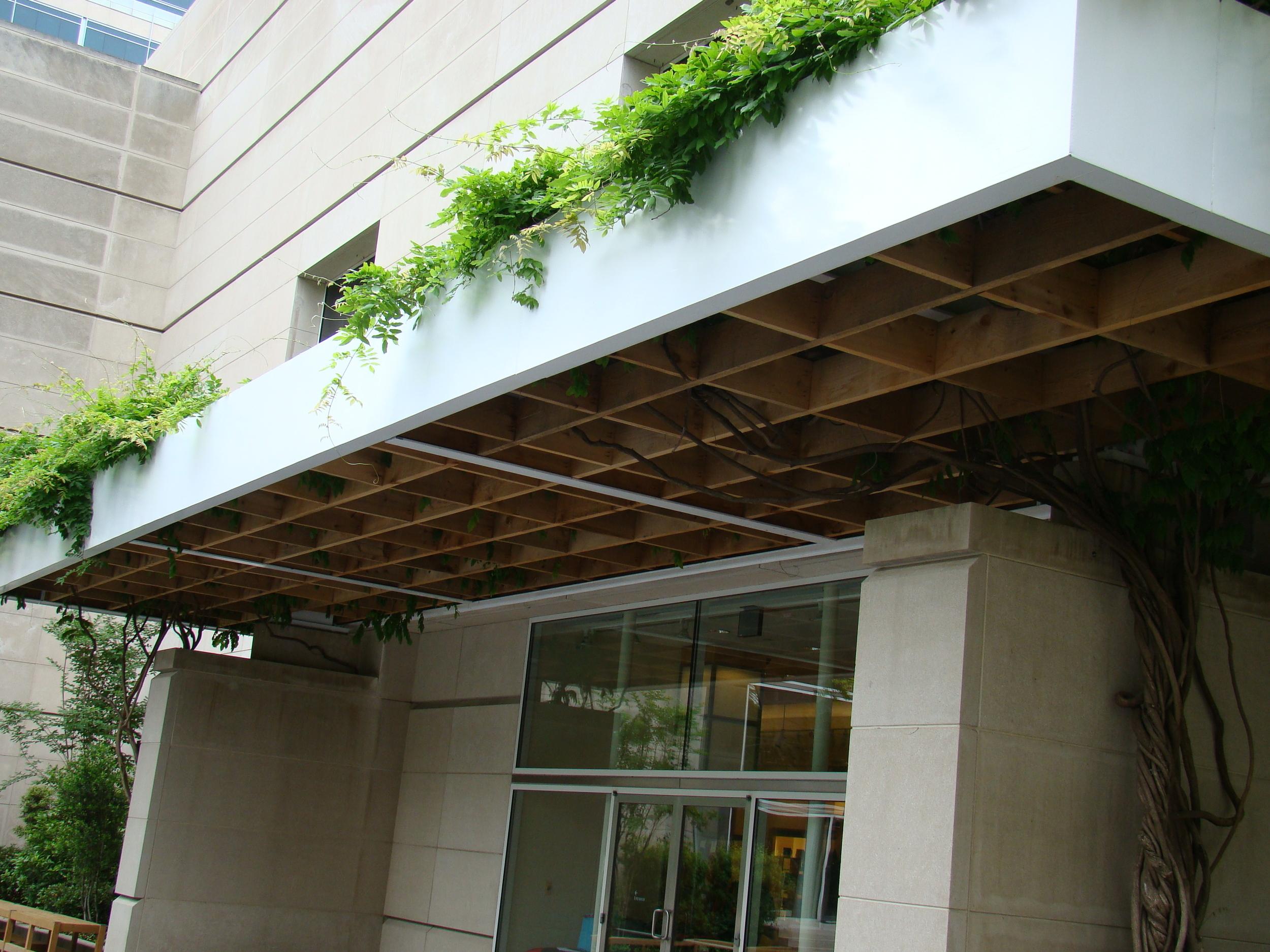 Dallas Museum of Art Atrium Remodel