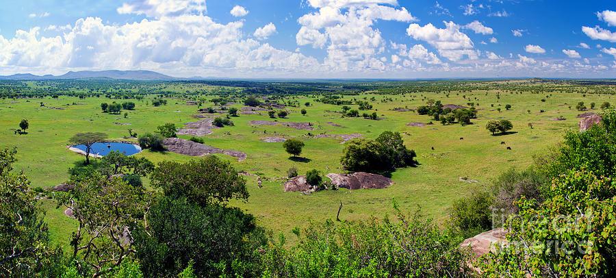 Example of a Savanna landscape