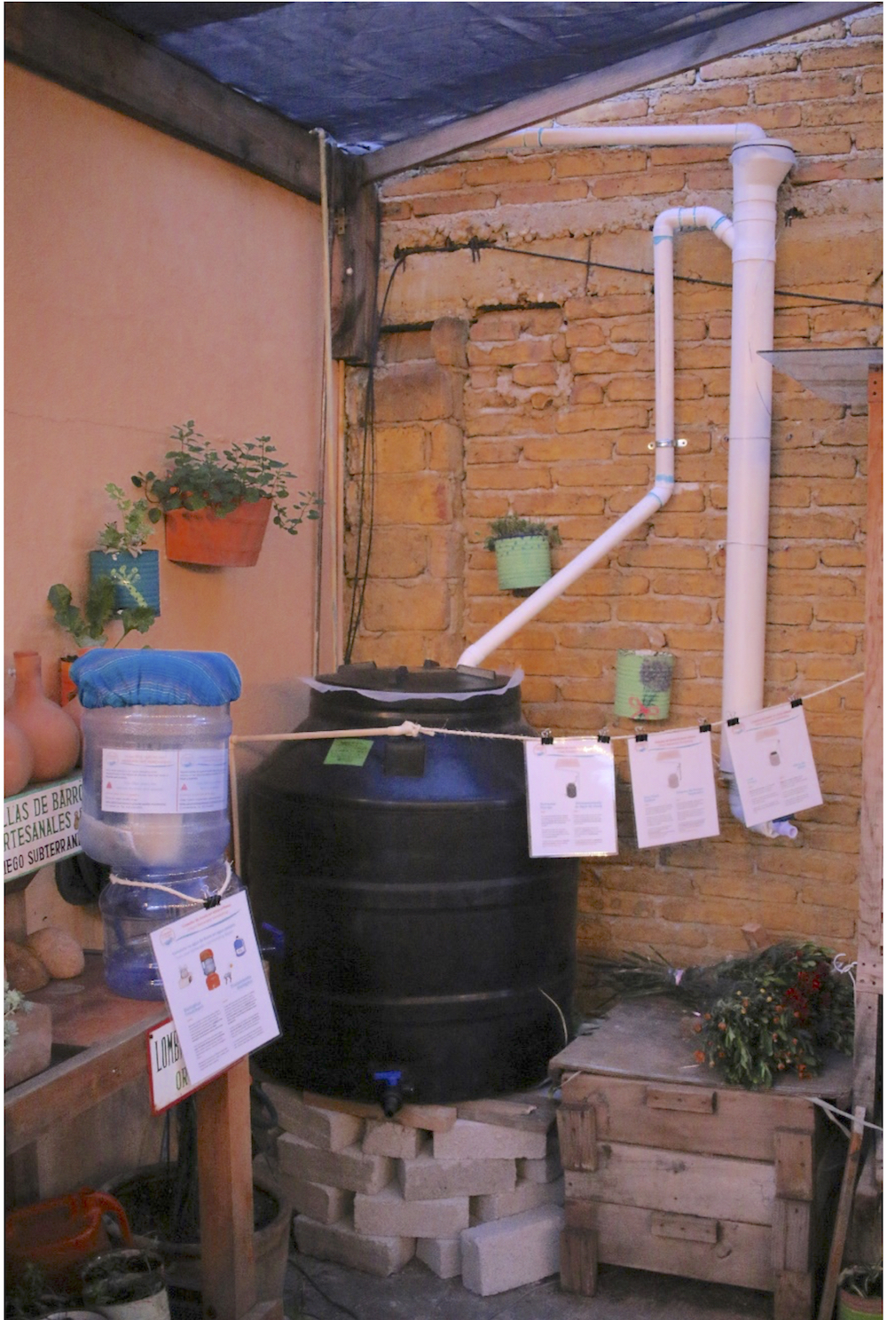 Small-scale urban rainwater harvesting system - utilizing our ceramic water filter for post-filtration -located at Vía Orgánica in San Miguel de Allende, Gto, México.