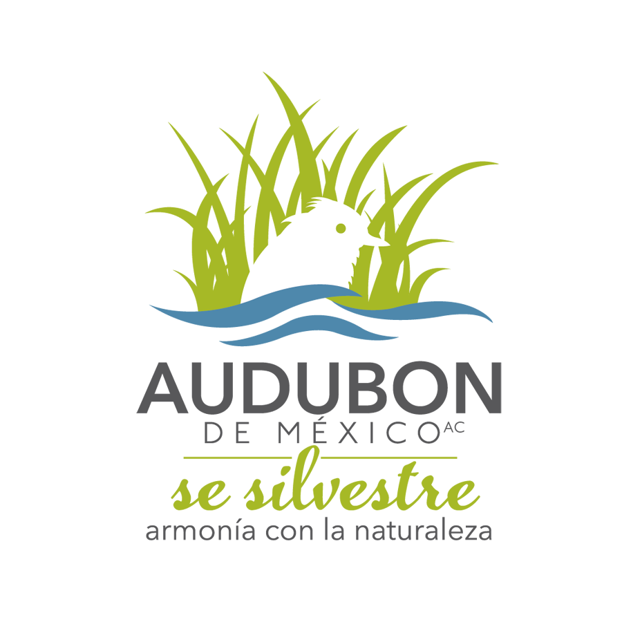 34_Audubon.png