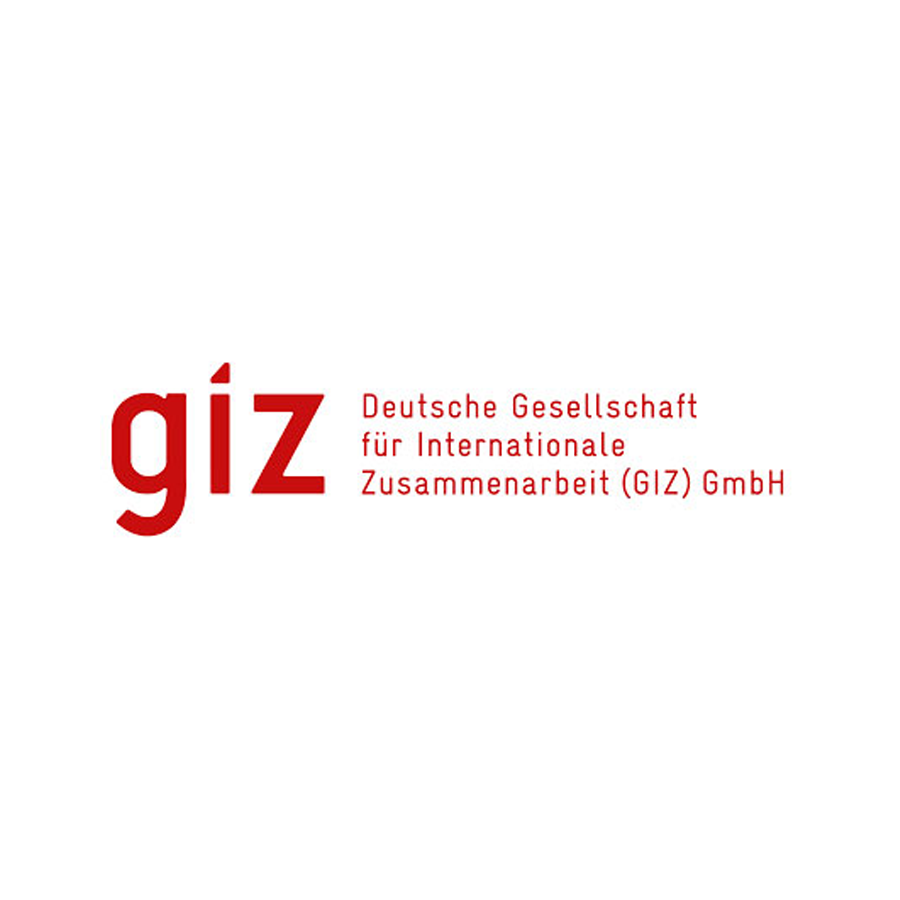 45_GIZ.png