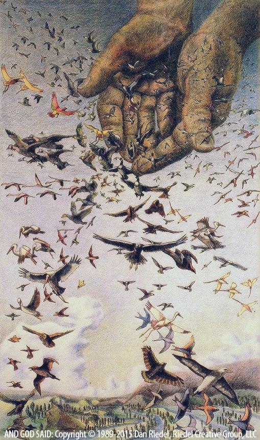 BIRDS FILL THE HEAVENS - Genesis 1:20