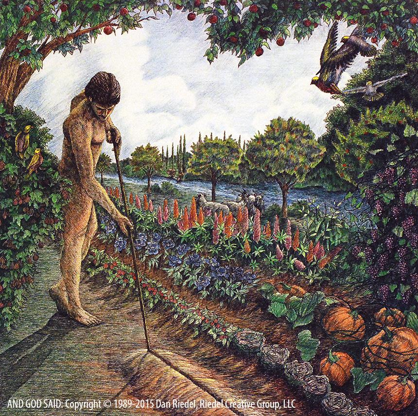 CULTIVATING & KEEPING THE GARDEN - Genesis 2:15