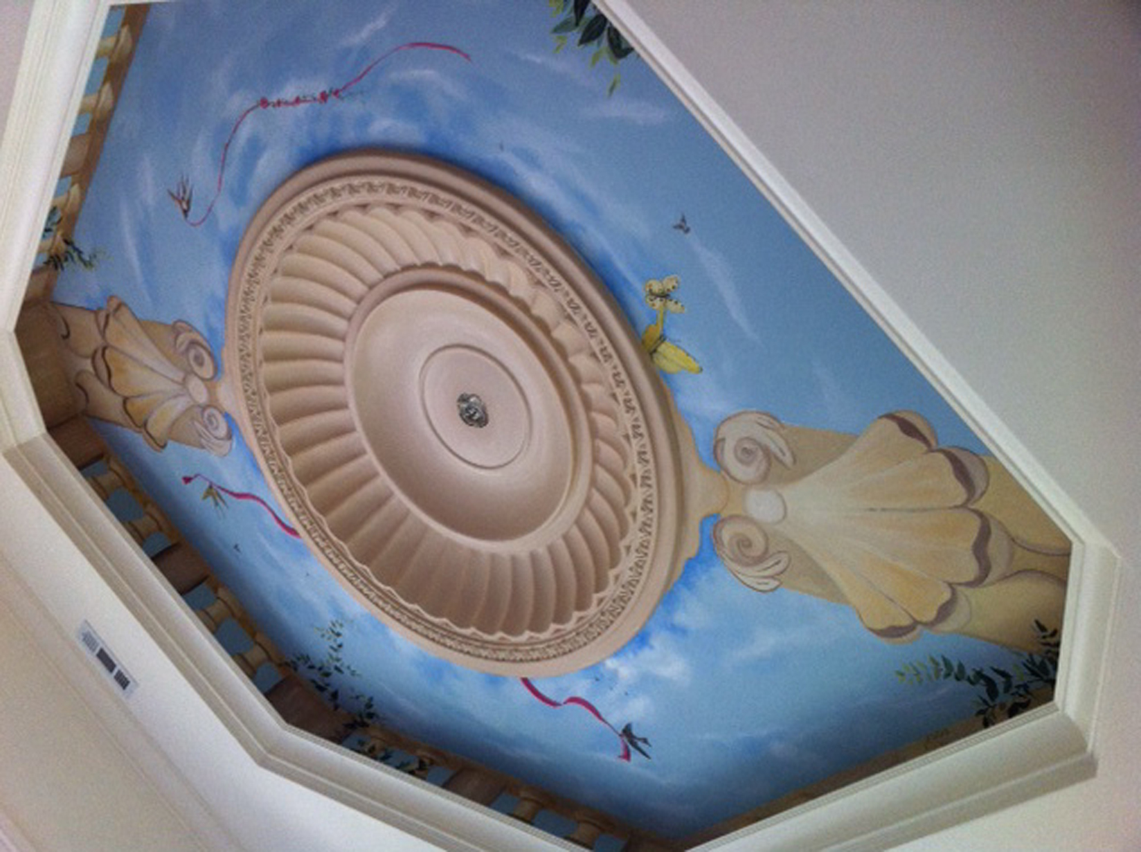 Tray Ceiling Mural