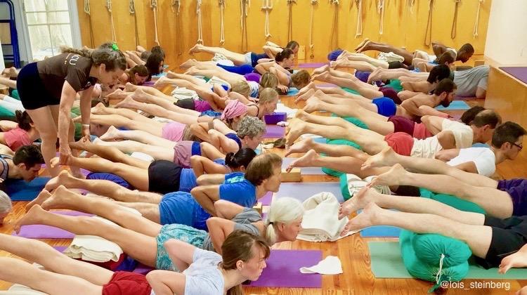 Iyengar Yoga Iyengar Yoga Champaign Urbana