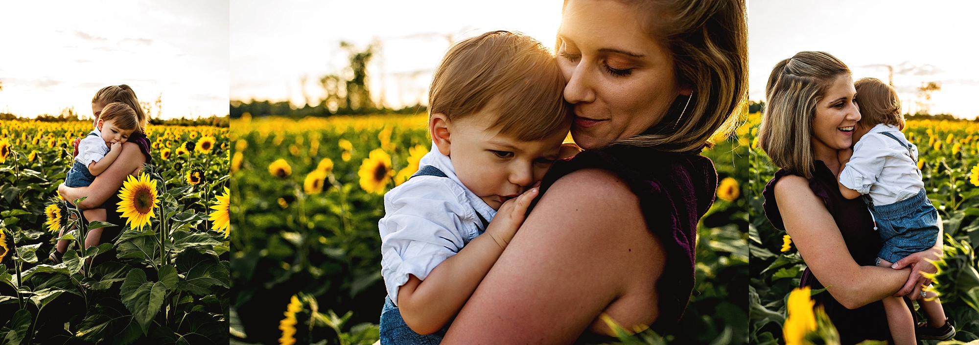 Schreiner-family-lauren-grayson-cleveland-photographer-sunflower-field-session_0004.jpg