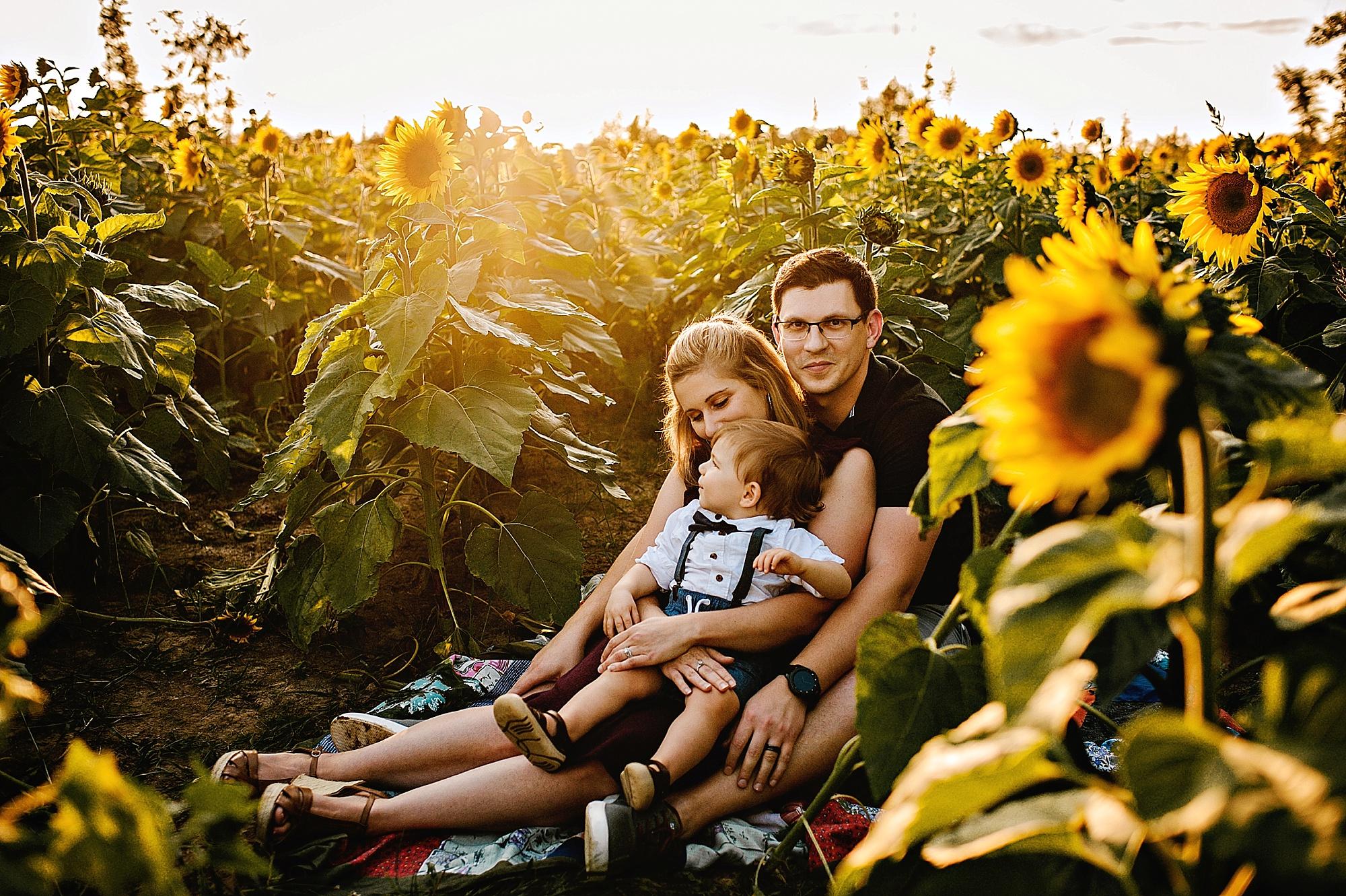 Schreiner-family-lauren-grayson-cleveland-photographer-sunflower-field-session_0013.jpg