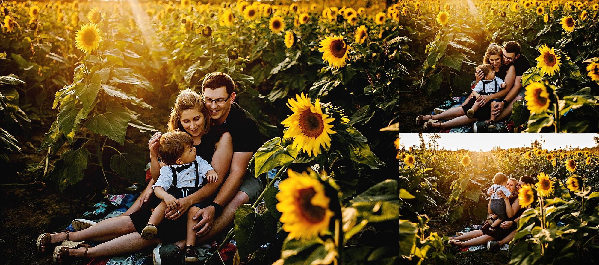 Schreiner-family-lauren-grayson-cleveland-photographer-sunflower-field-session_0014.jpg
