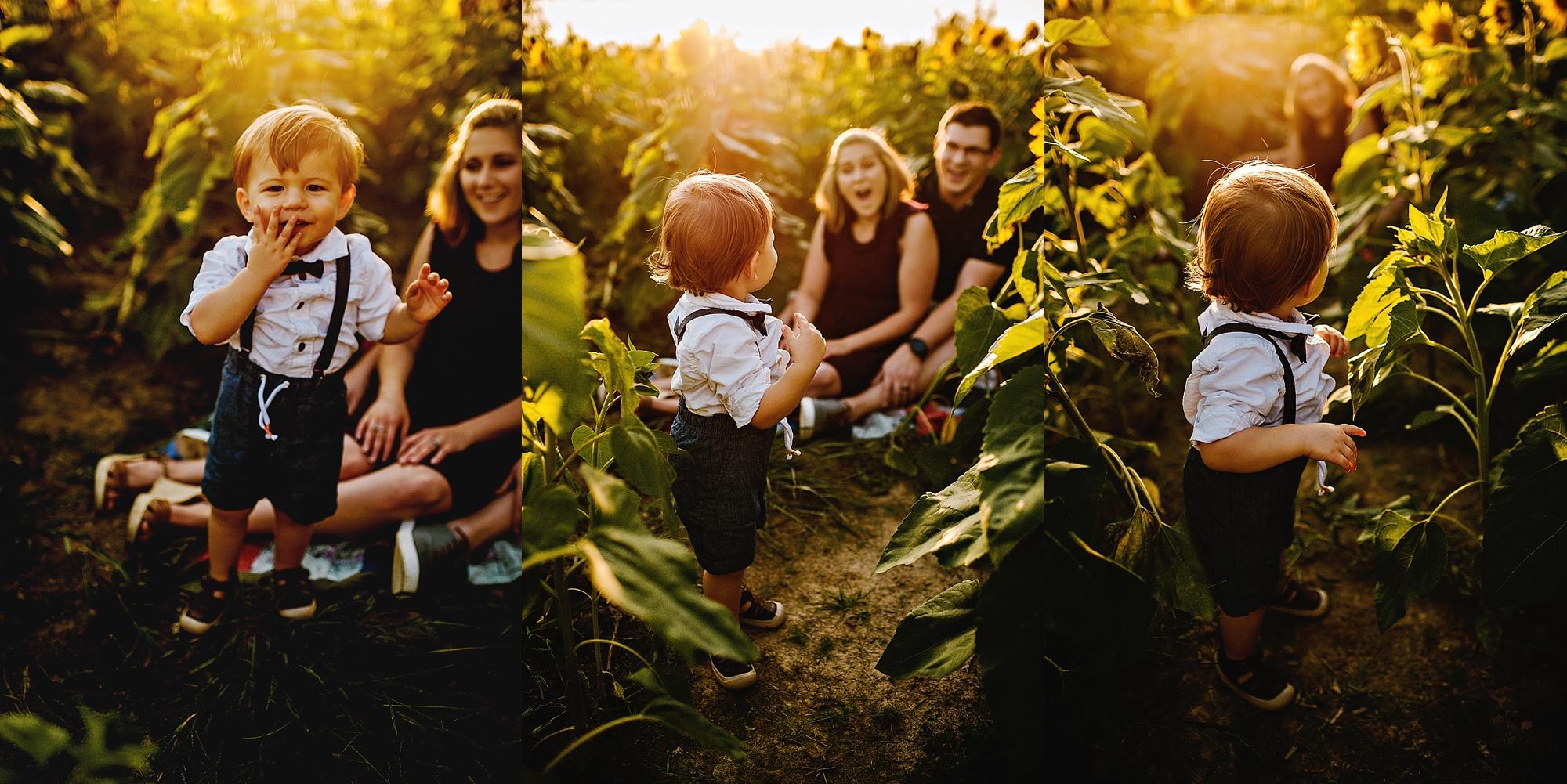 Schreiner-family-lauren-grayson-cleveland-photographer-sunflower-field-session_0016.jpg