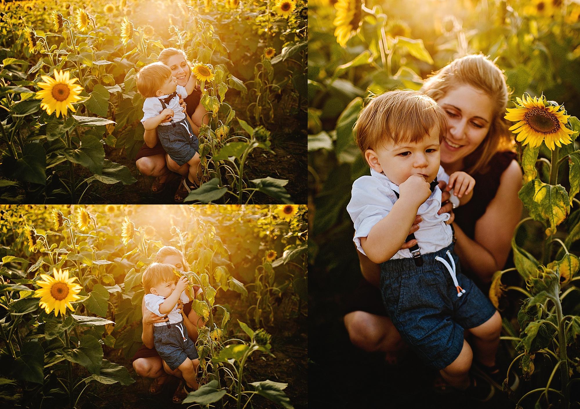 Schreiner-family-lauren-grayson-cleveland-photographer-sunflower-field-session_0019.jpg