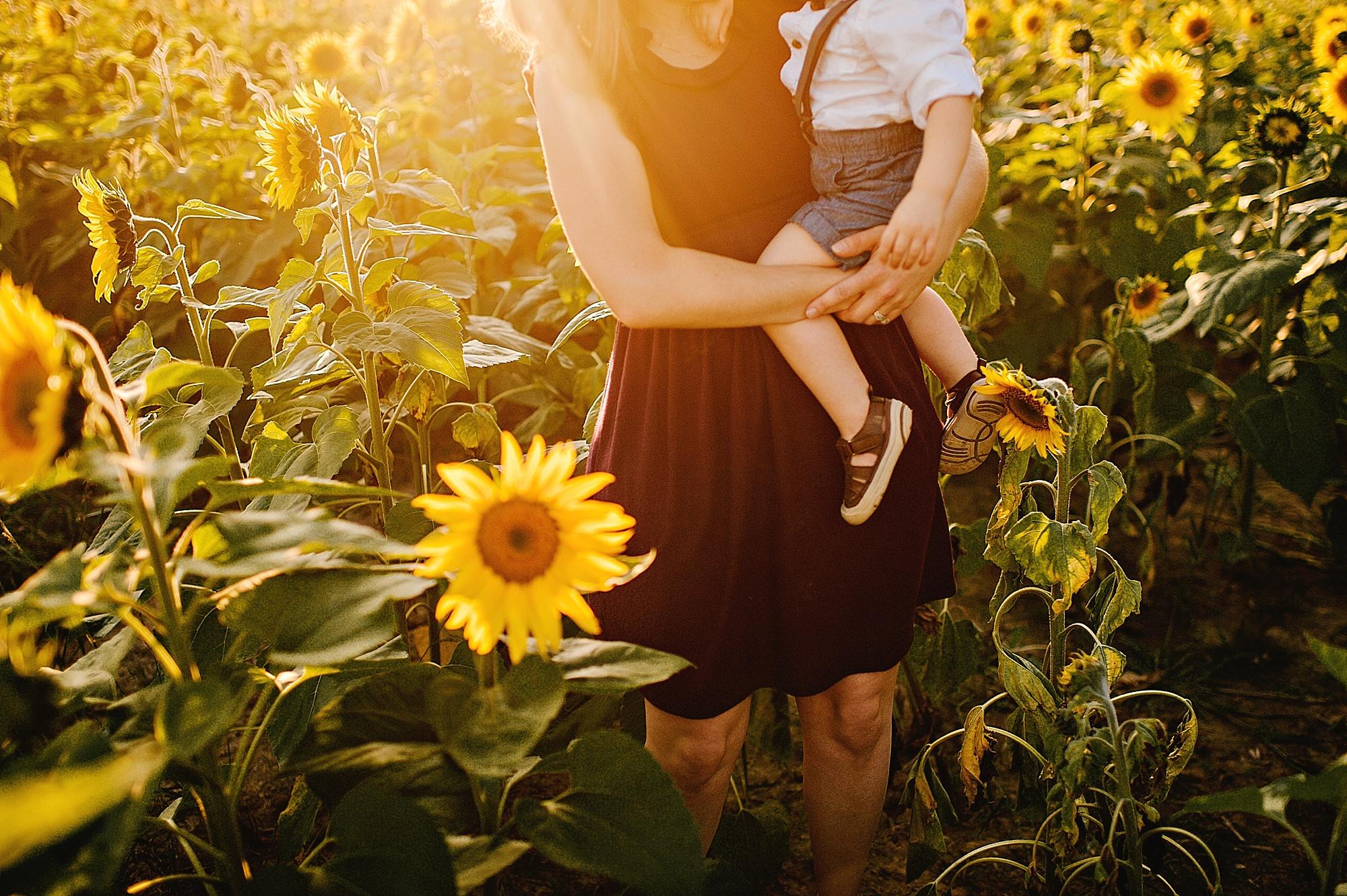 Schreiner-family-lauren-grayson-cleveland-photographer-sunflower-field-session_0020.jpg
