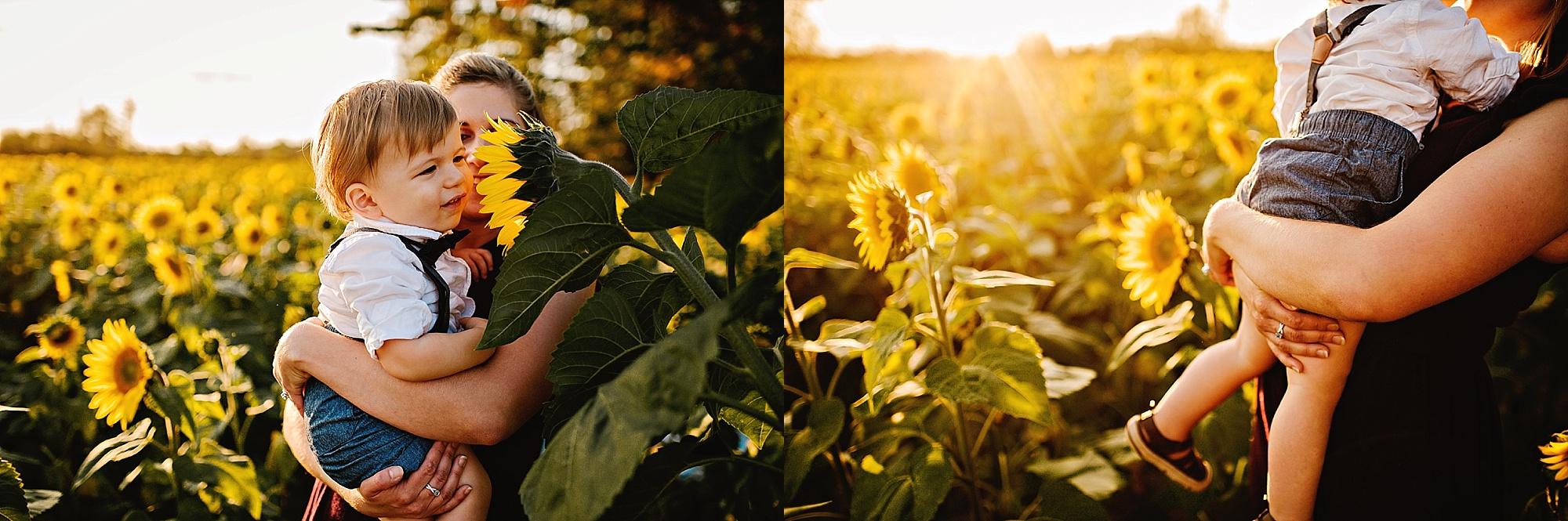 Schreiner-family-lauren-grayson-cleveland-photographer-sunflower-field-session_0021.jpg