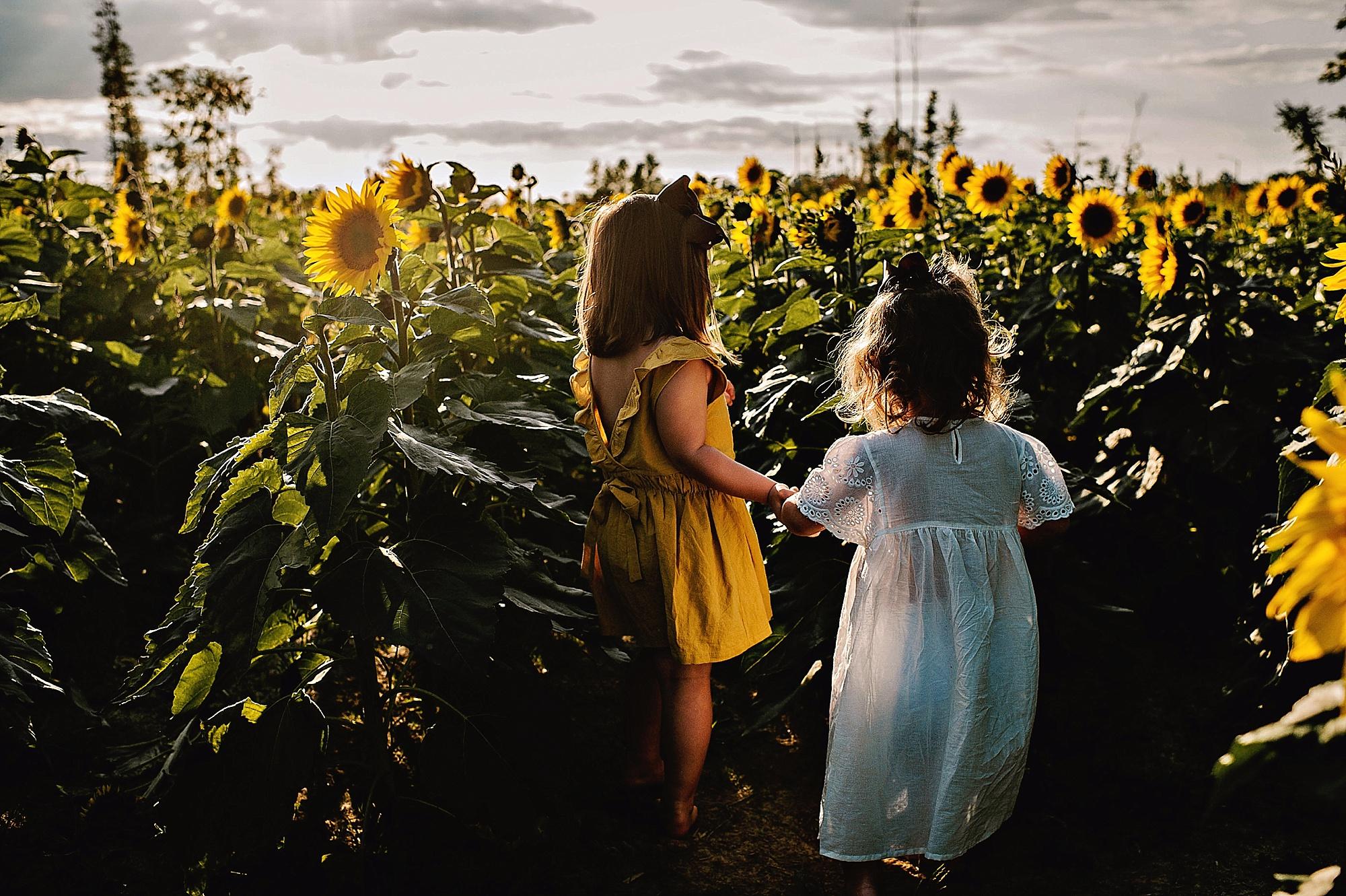 Rutherford-family-cleveland-photographer-lauren-grayson-sunflower-field-session_0004.jpg