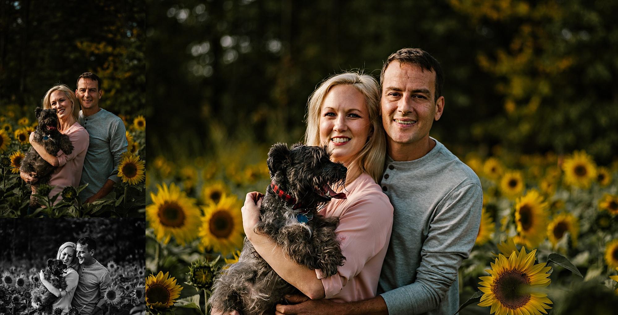 Lori-and-mike-akron-ohio-photographer-lauren-grayson-sunflower-field-session_0002.jpg