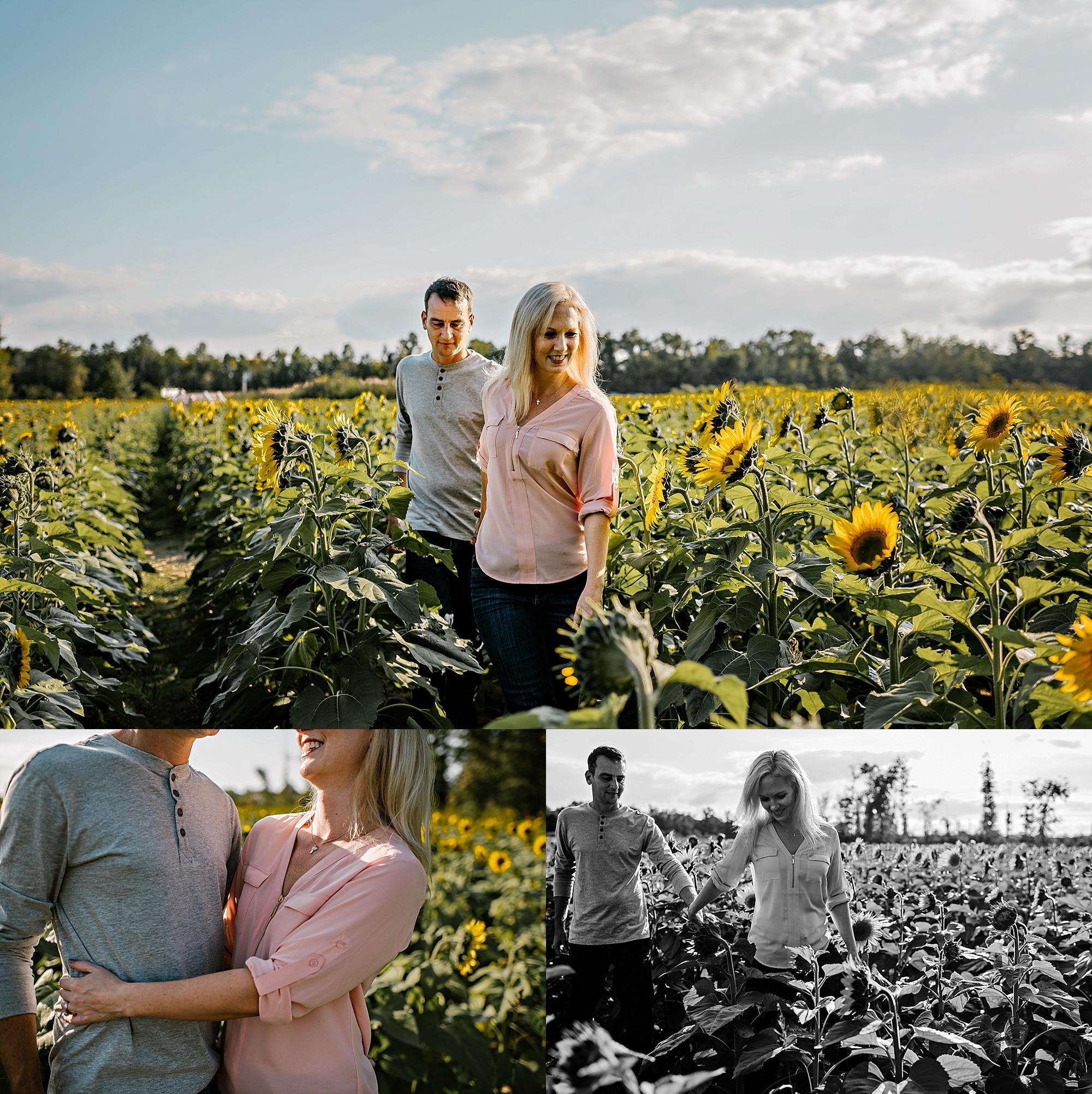 Lori-and-mike-akron-ohio-photographer-lauren-grayson-sunflower-field-session_0010.jpg