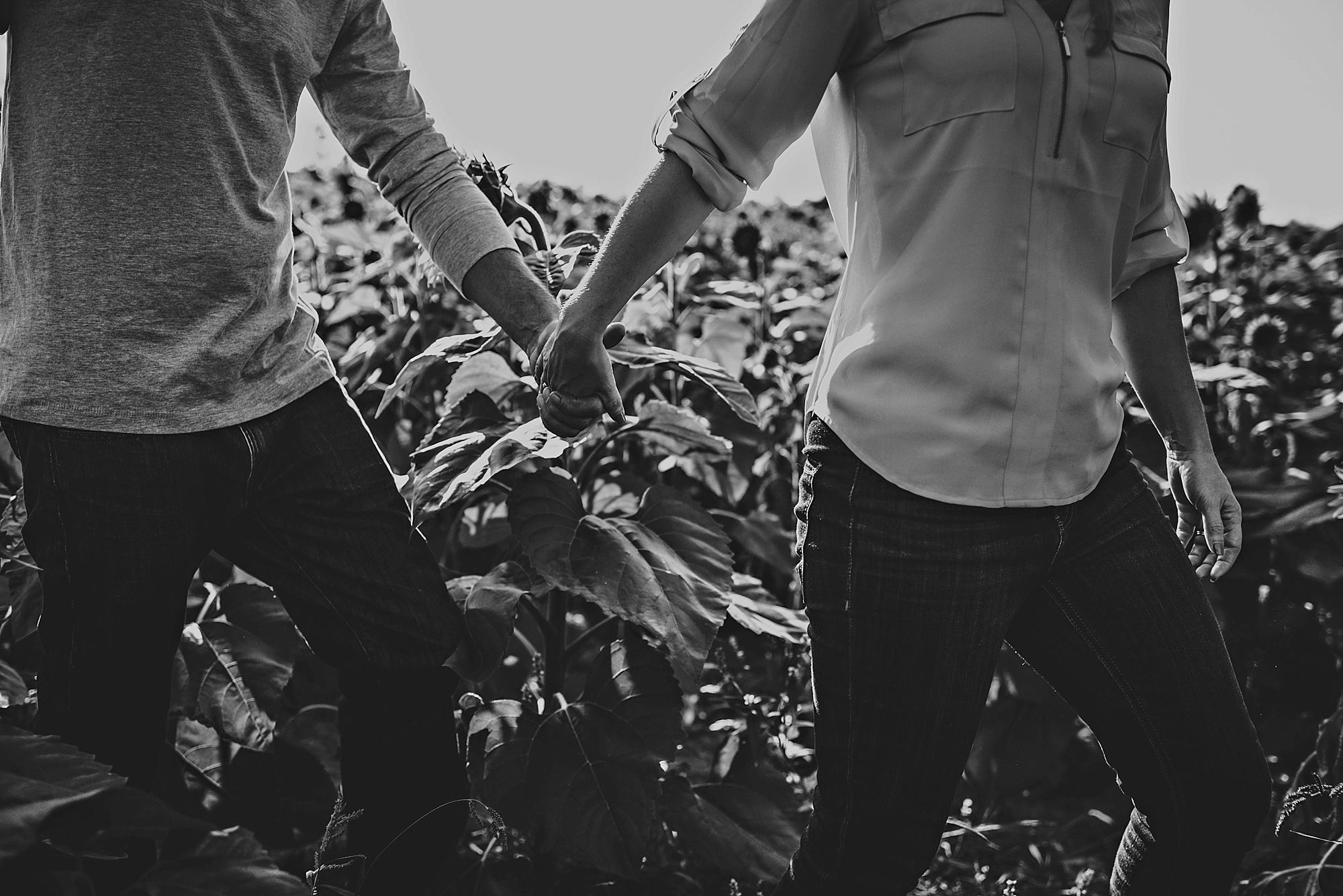 Lori-and-mike-akron-ohio-photographer-lauren-grayson-sunflower-field-session_0011.jpg
