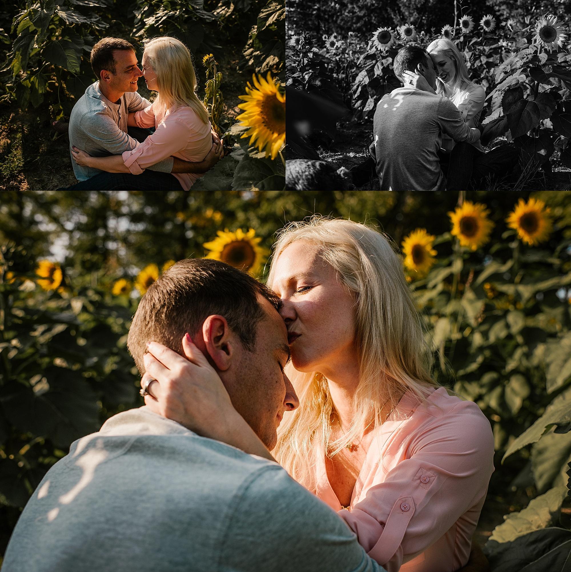 Lori-and-mike-akron-ohio-photographer-lauren-grayson-sunflower-field-session_0016.jpg