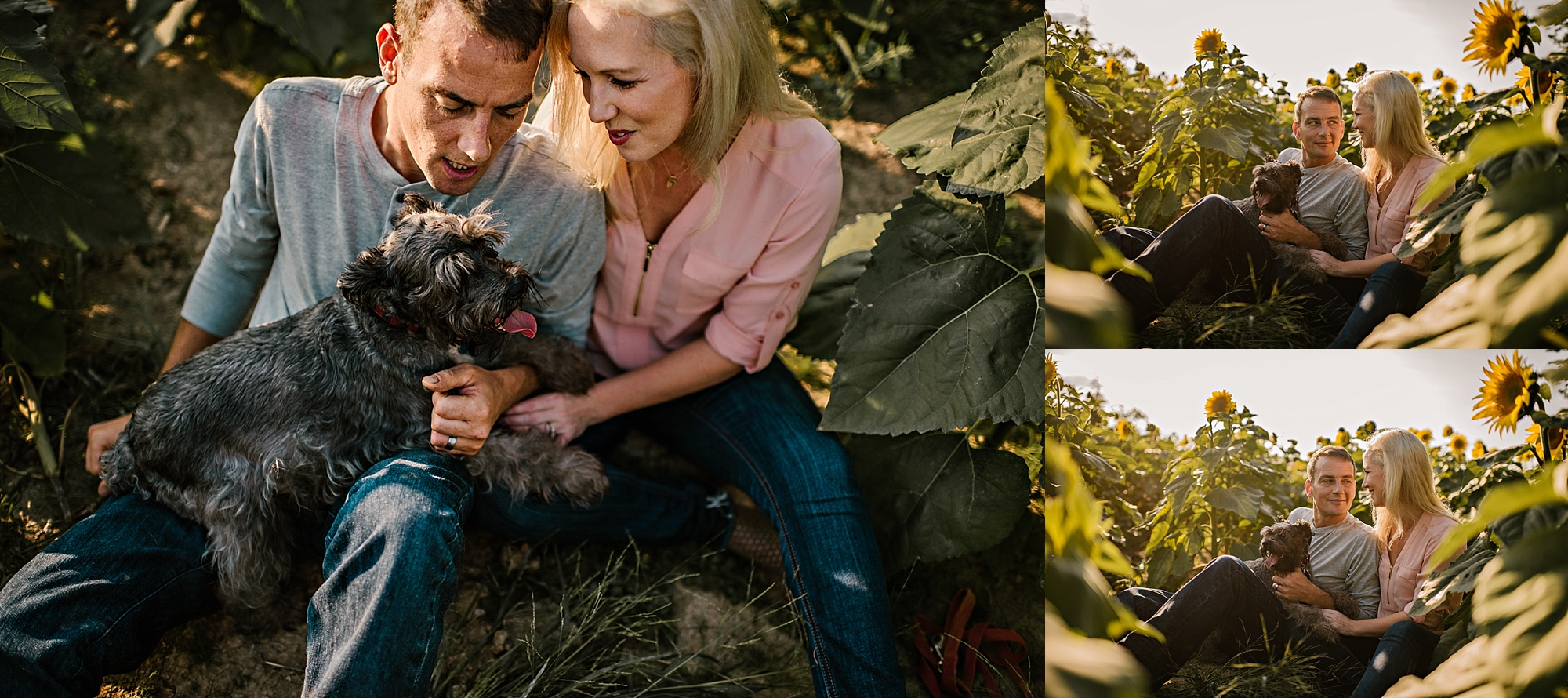 Lori-and-mike-akron-ohio-photographer-lauren-grayson-sunflower-field-session_0019.jpg