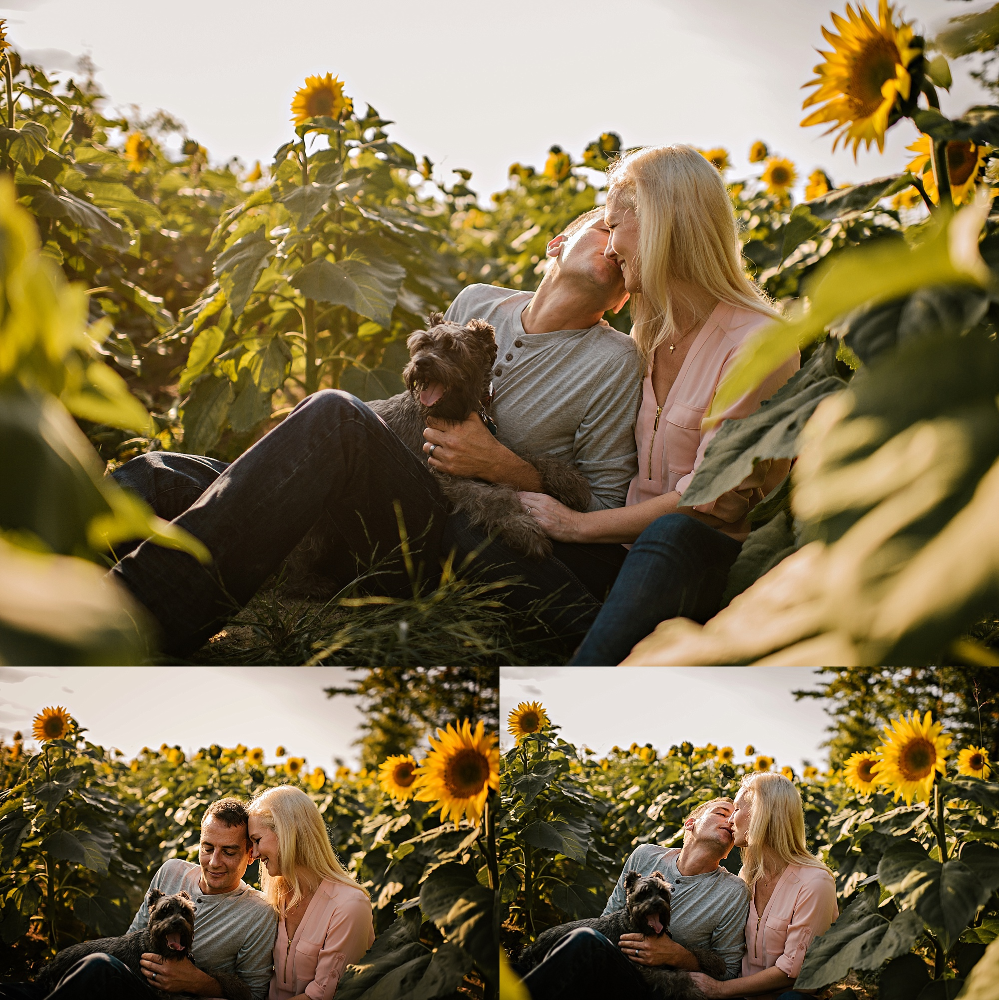Lori-and-mike-akron-ohio-photographer-lauren-grayson-sunflower-field-session_0020.jpg