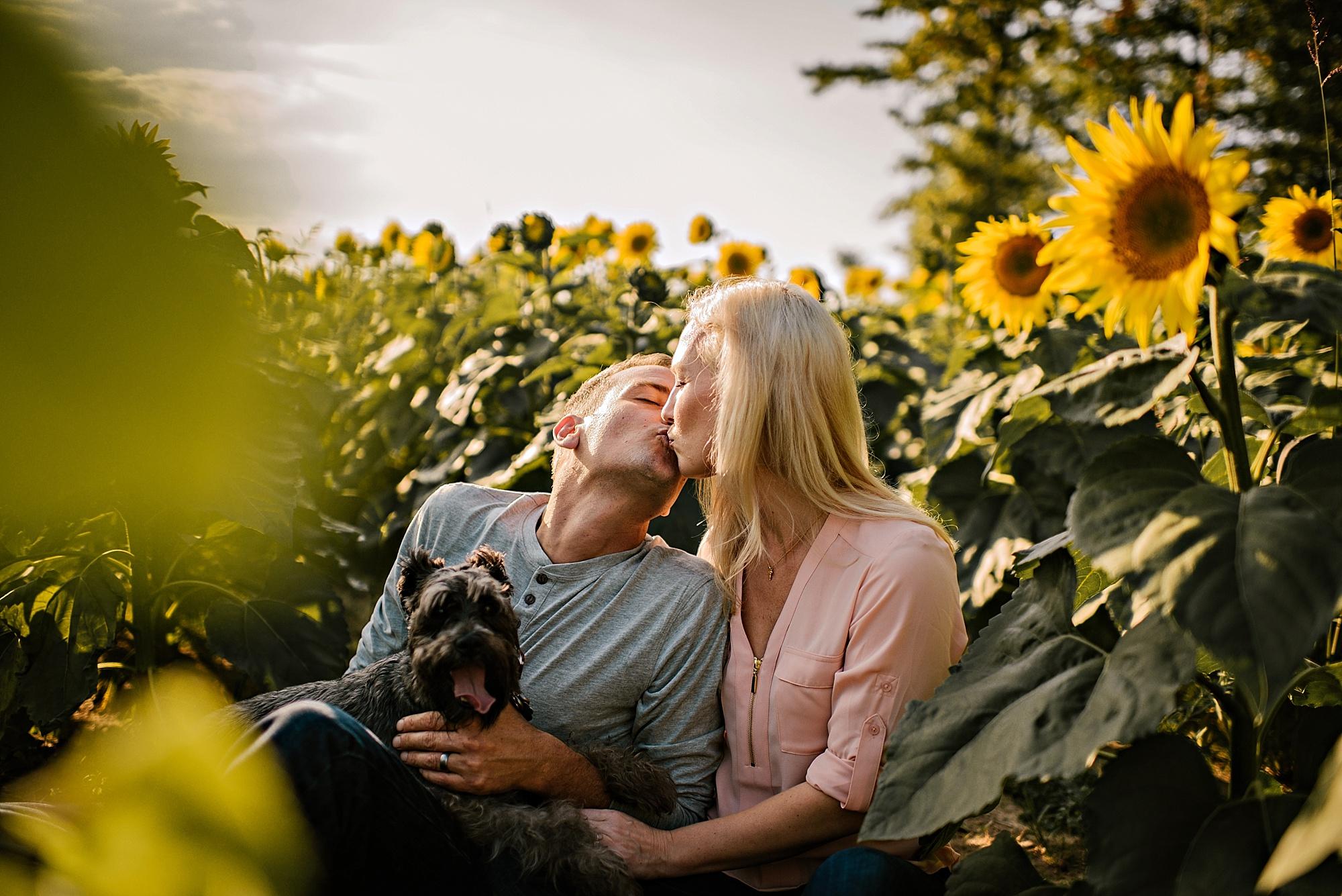 Lori-and-mike-akron-ohio-photographer-lauren-grayson-sunflower-field-session_0021.jpg