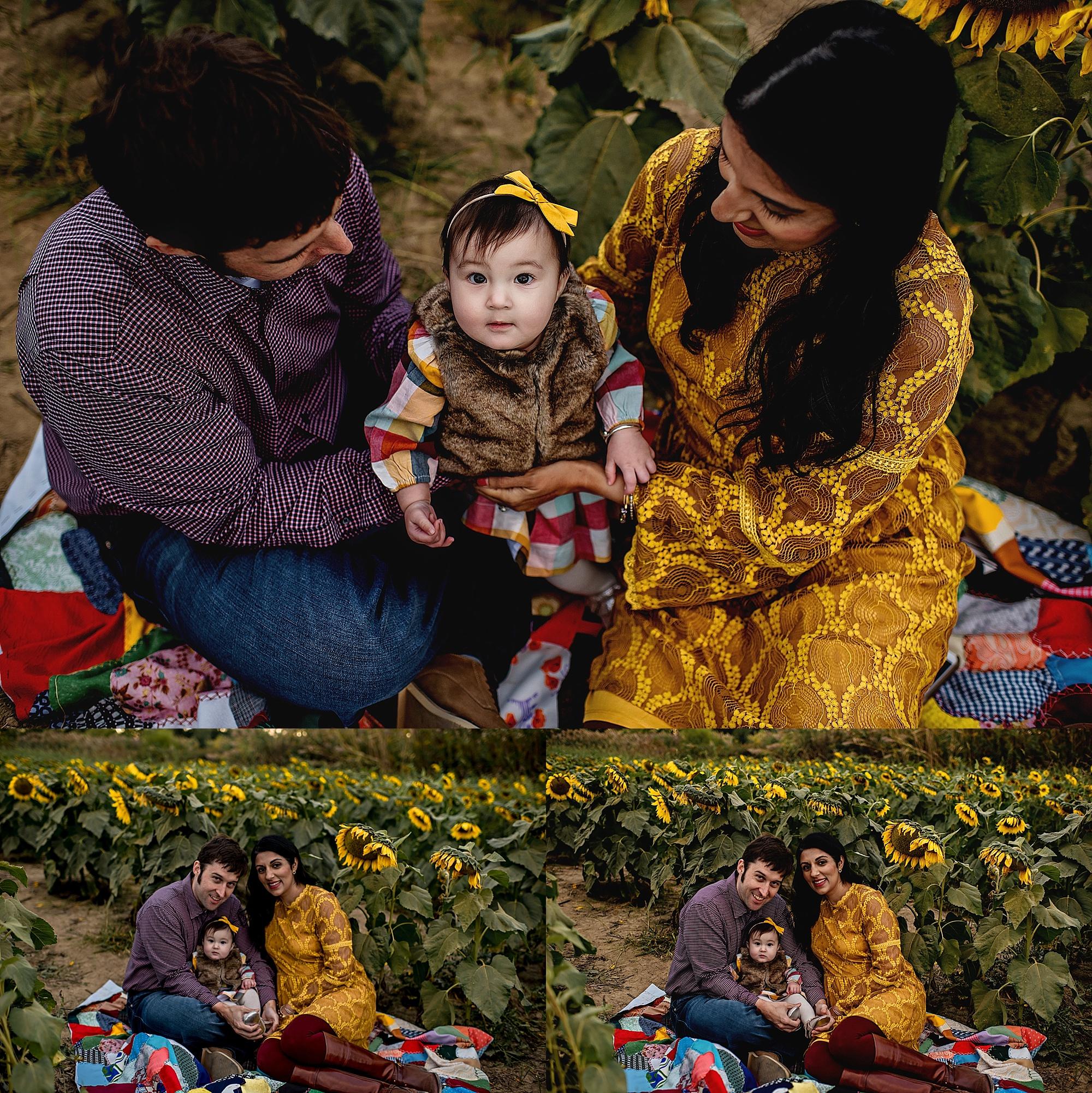 Turner-family-akron-ohio-photographer-lauren-grayson-sunflower-field-session_0002.jpg