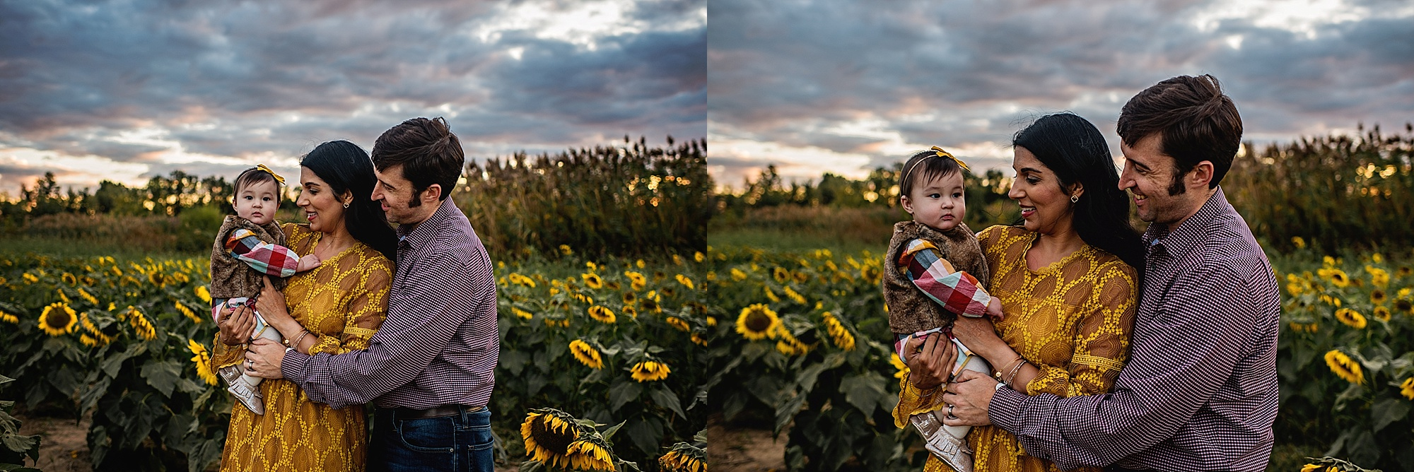 Turner-family-akron-ohio-photographer-lauren-grayson-sunflower-field-session_0016.jpg