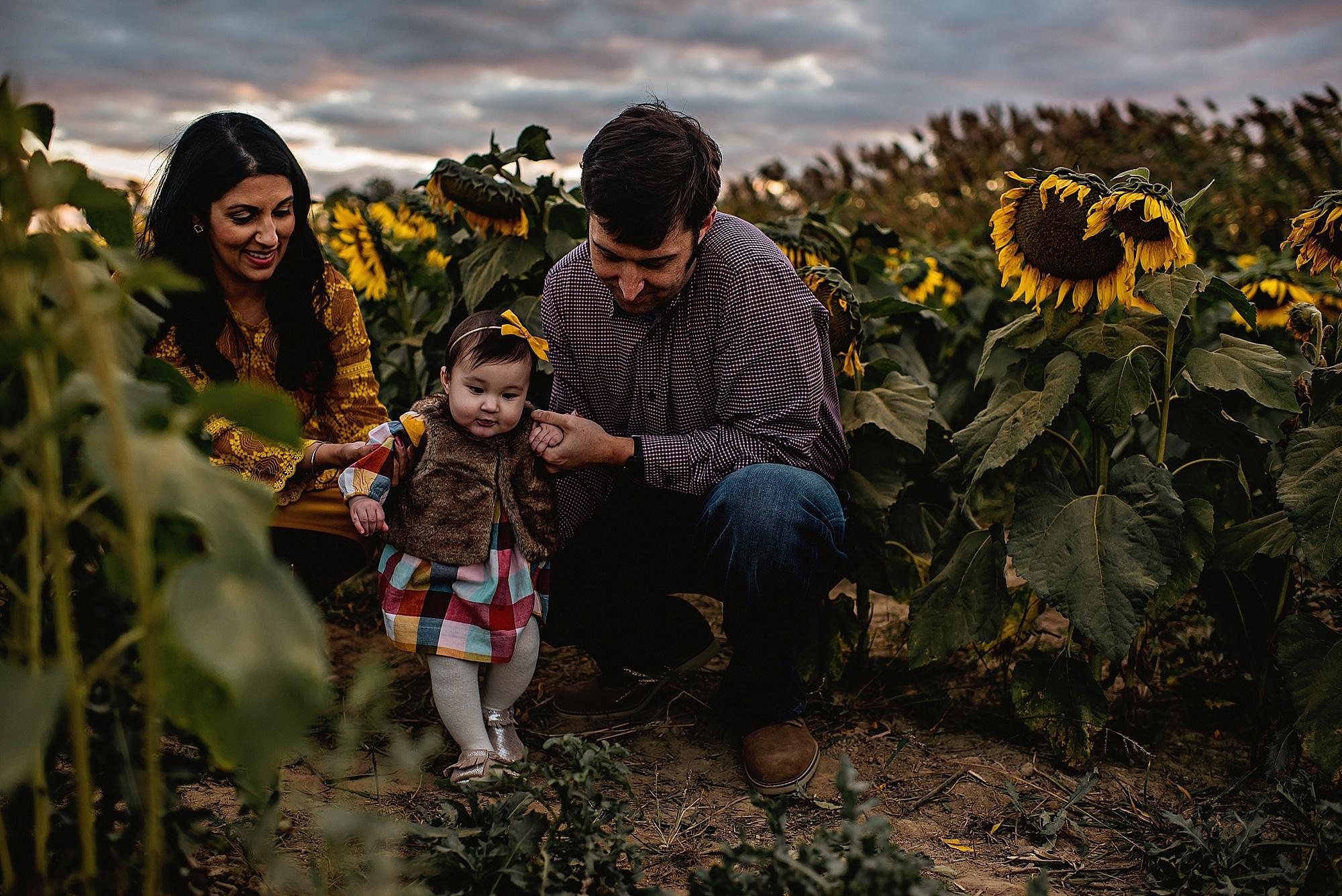 Turner-family-akron-ohio-photographer-lauren-grayson-sunflower-field-session_0017.jpg